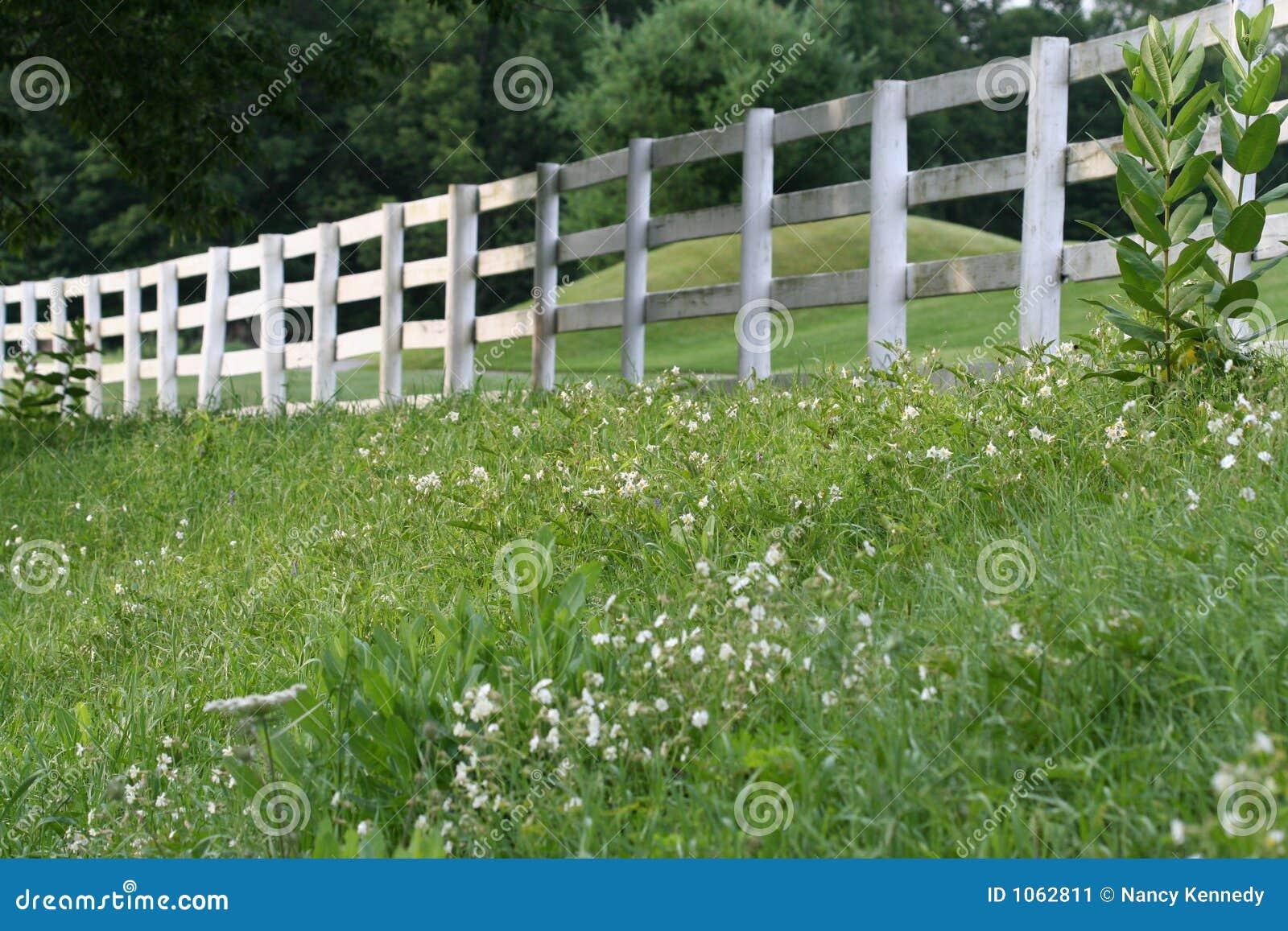 weißer zaun stockbild. bild von sommer, holz, landschaft - 1062811