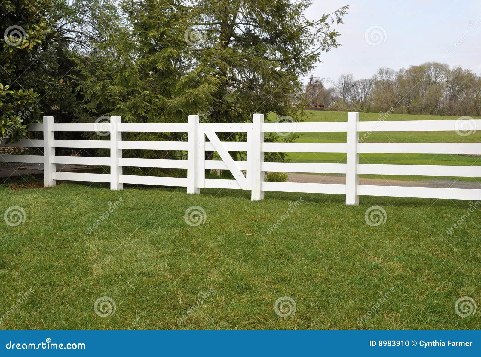 weißer zaun durch eine wiese stockfoto - bild von sperre, lang: 8983910