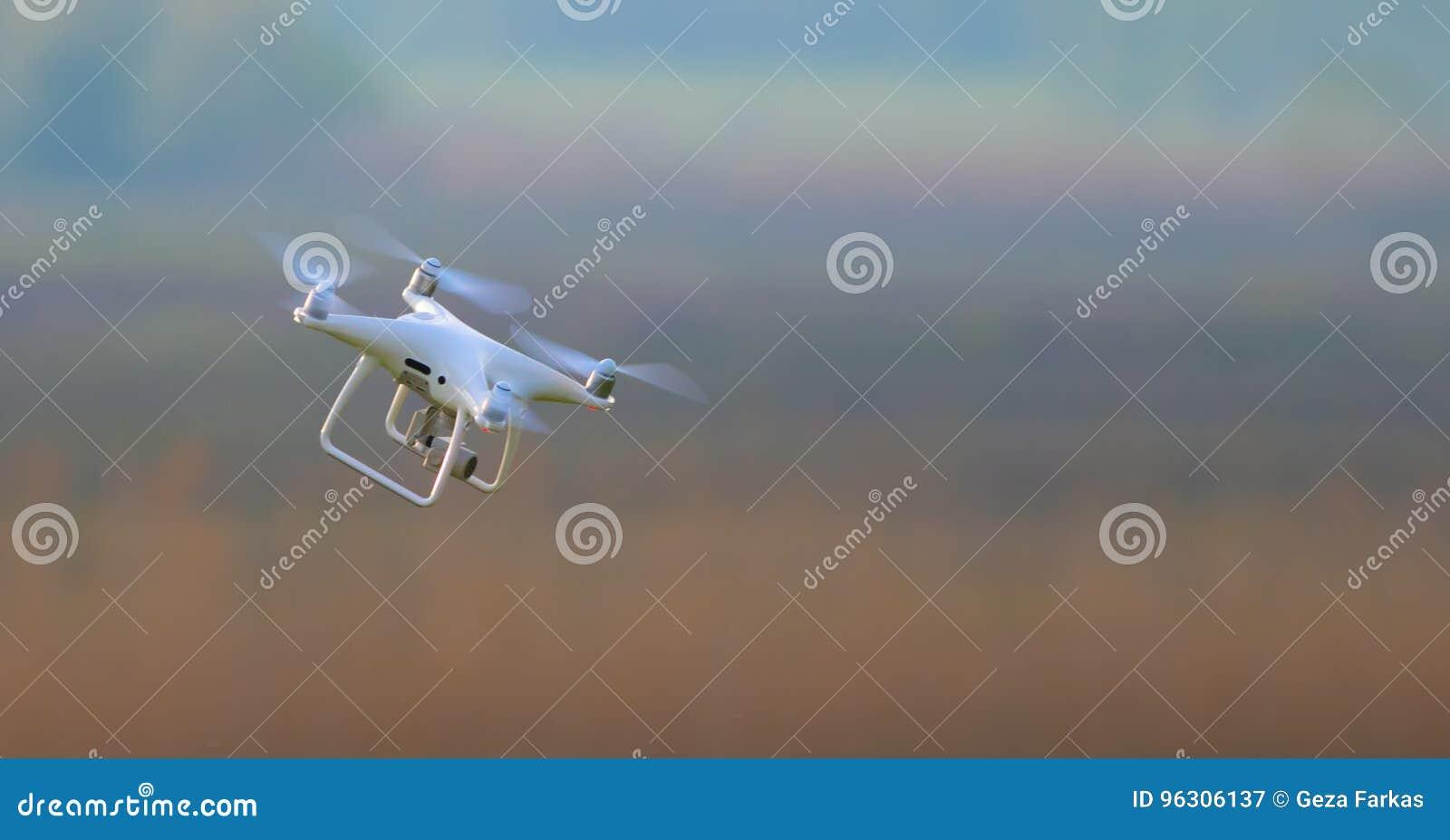 Weißes Brummen fliegt in volle Geschwindigkeit