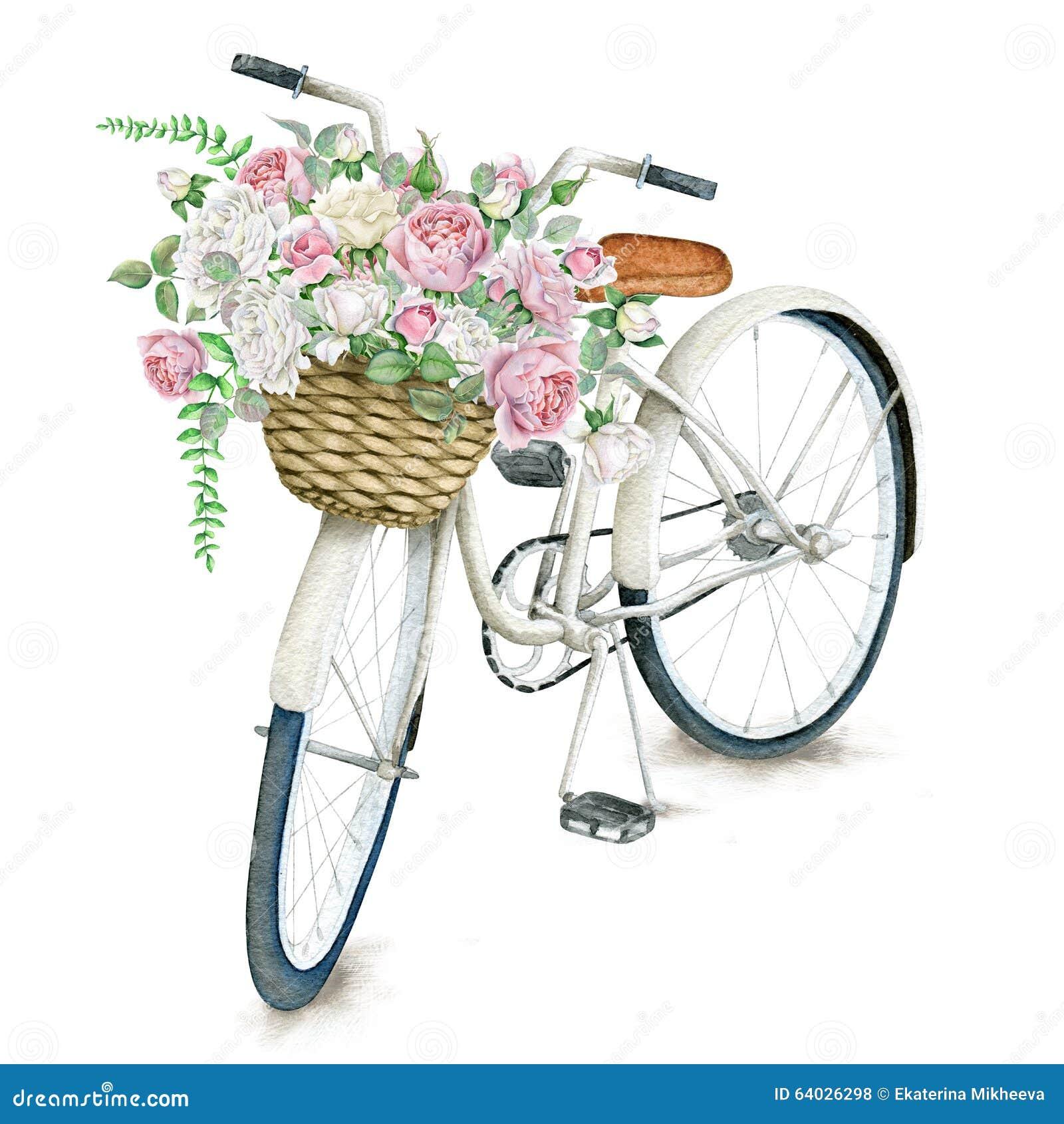Weißes Fahrrad des Aquarells mit Rosen