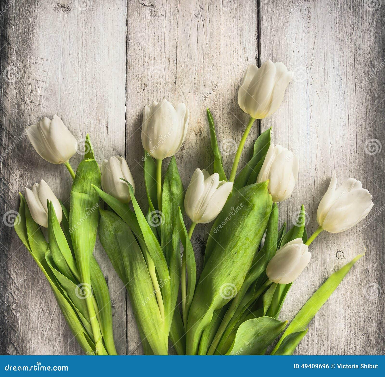 Download Weißes Tulpenbündel Auf Altem Hellem Hölzernem Hintergrund Stockfoto - Bild von ostern, farbe: 49409696