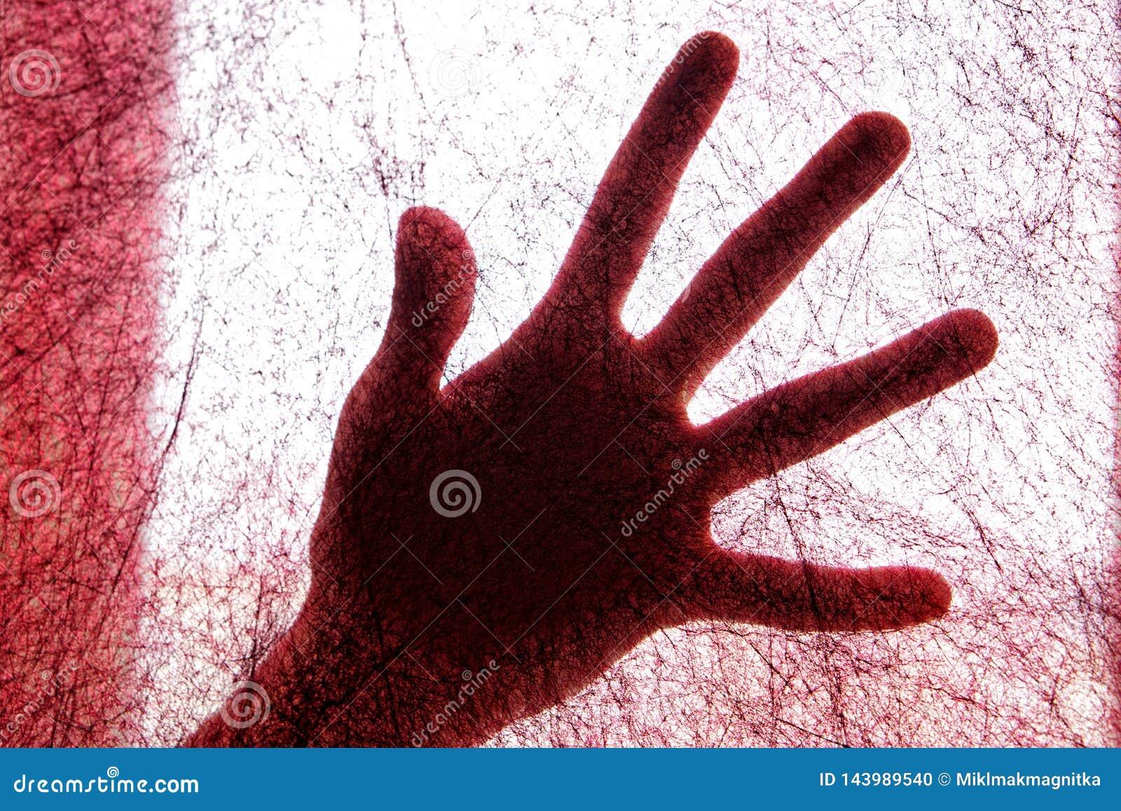 Weibliche Palme durch ein rotes geglaubtes Gewebe, das einem Spinnennetz ähnelt arachnophobia r