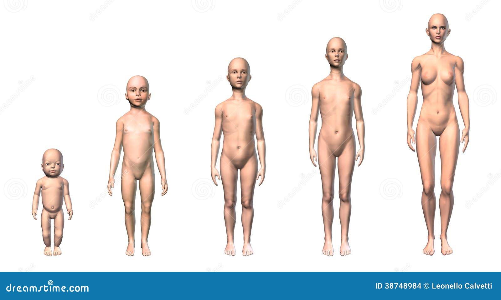 Ausgezeichnet Weibliches Menschliches Körper Bild Galerie ...