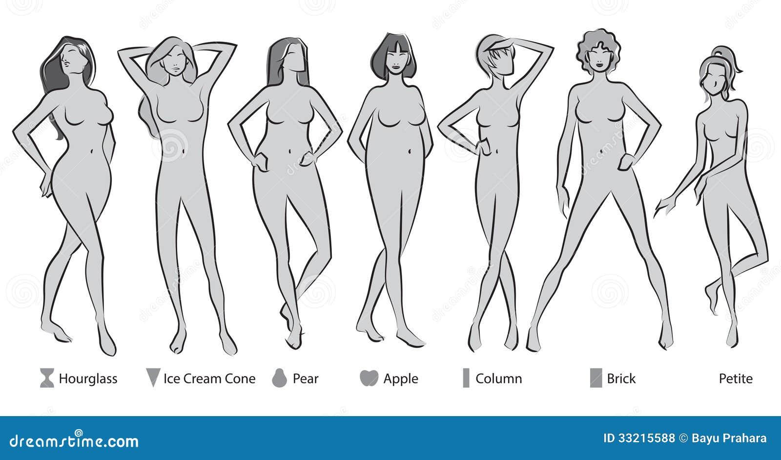 Weiblicher Körper-Formen vektor abbildung. Illustration von ...