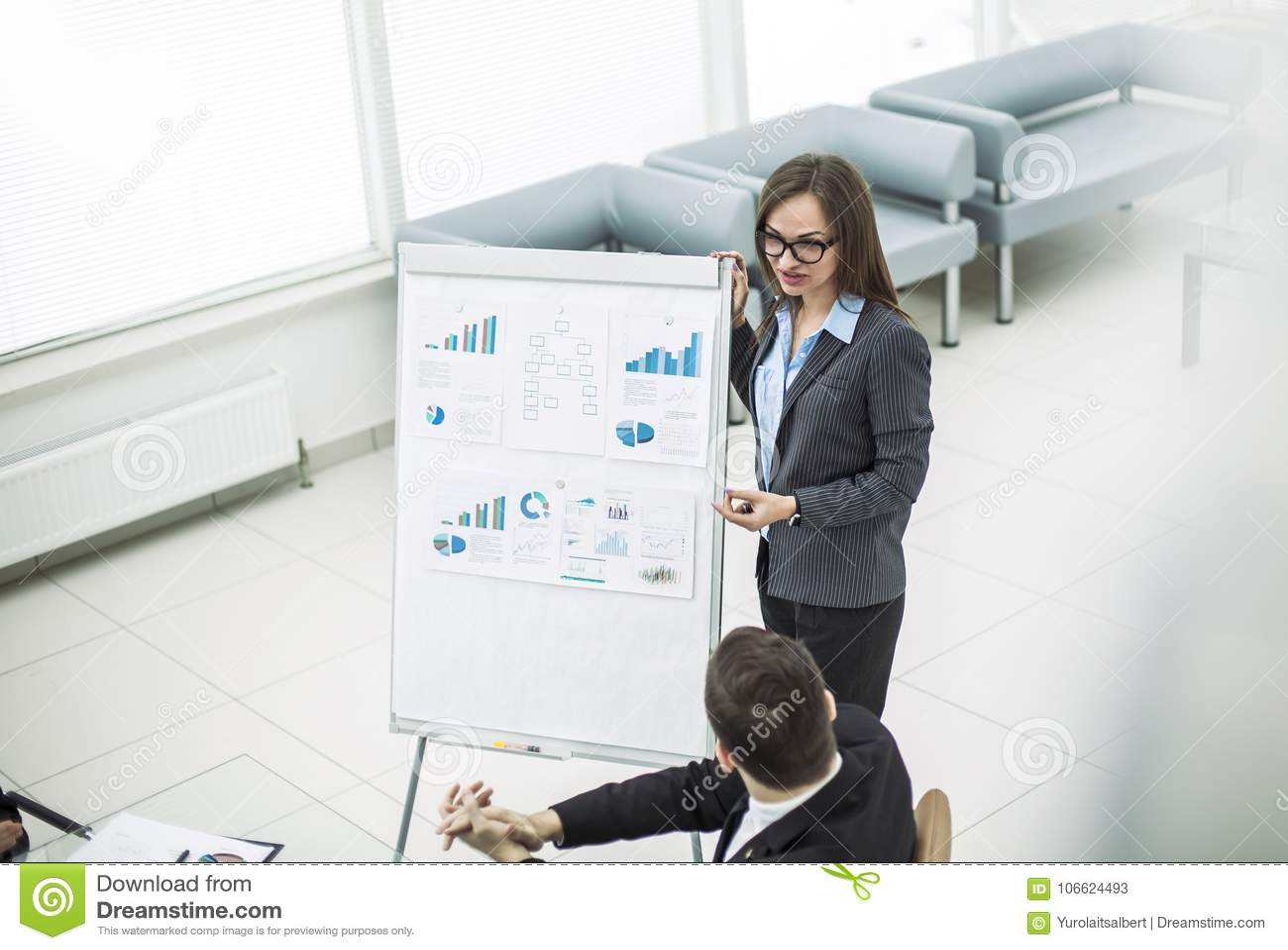 Weiblicher Manager leitet Marketing-Darstellung in einem modernen Büro