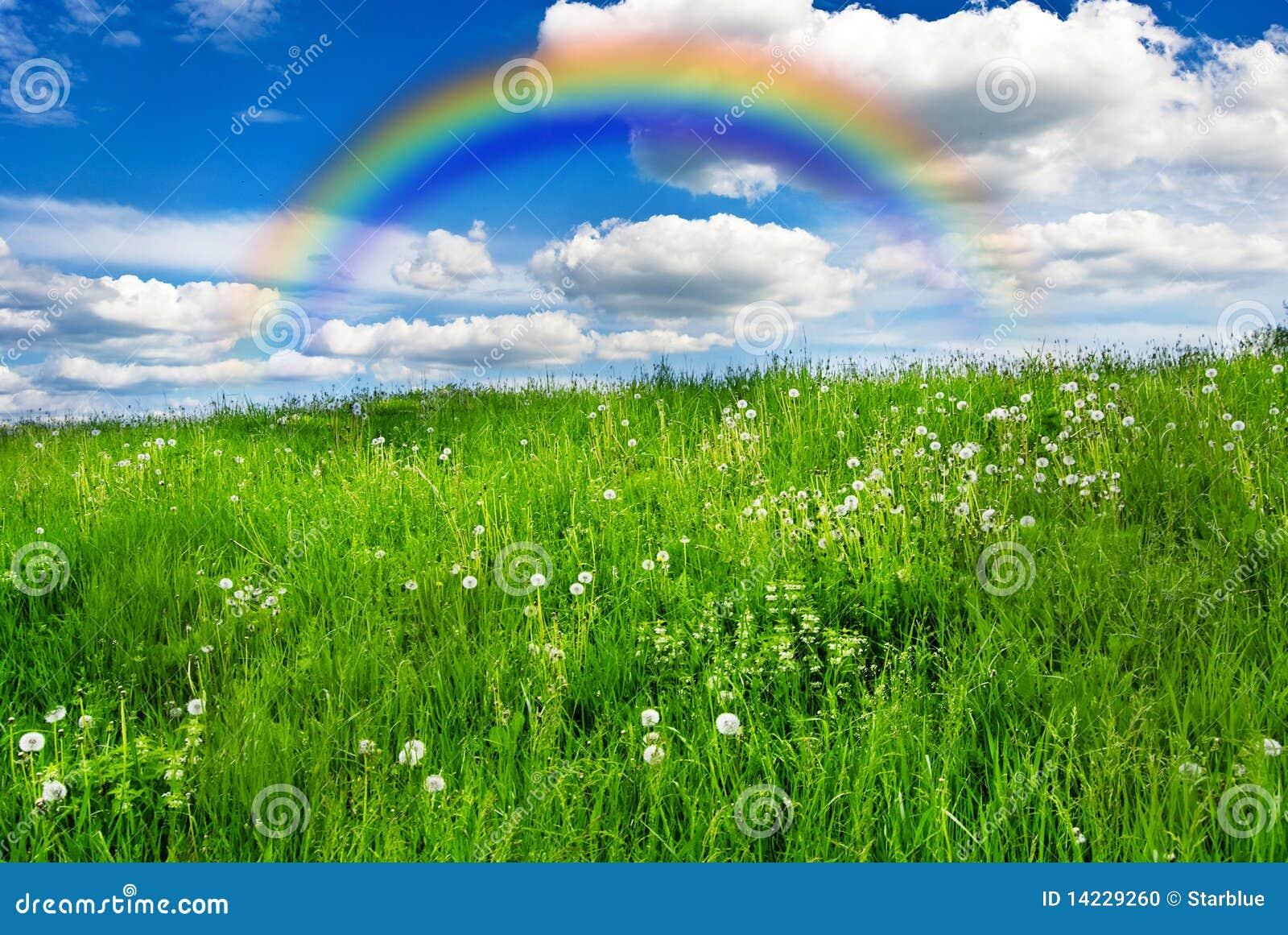 Weide met regenboog