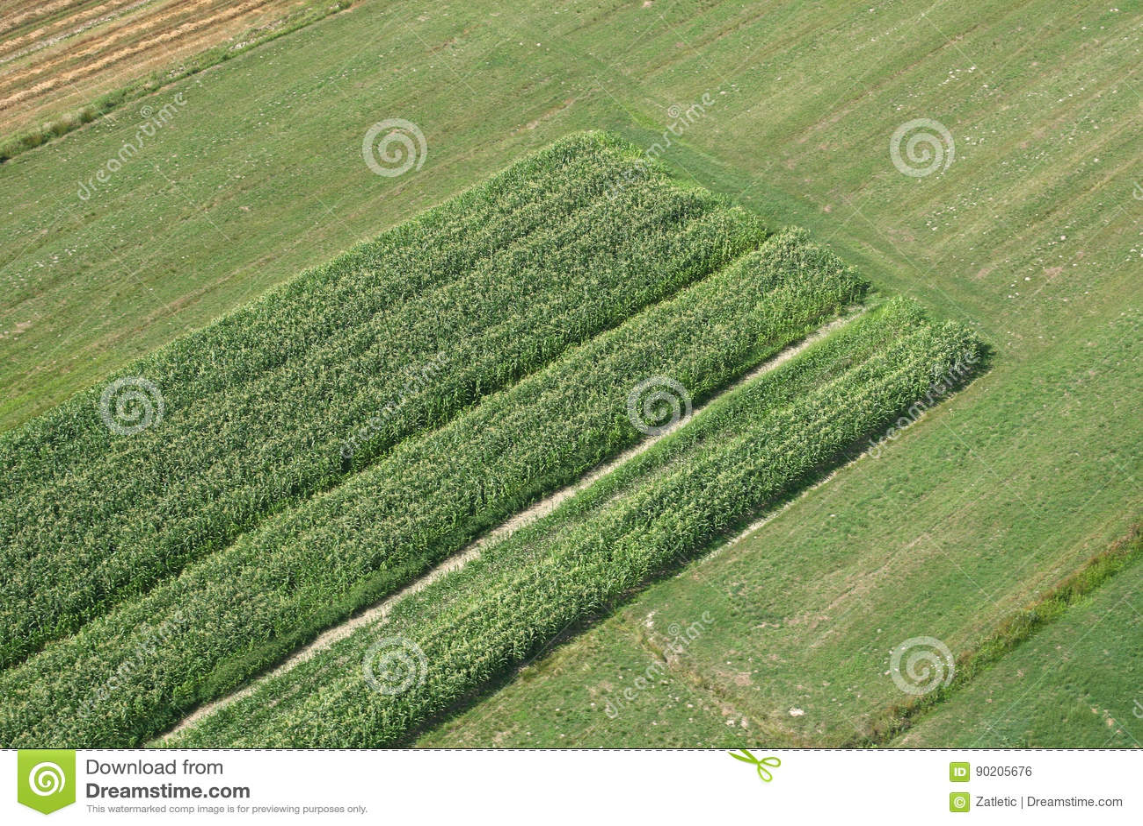 Weiden en gebieden