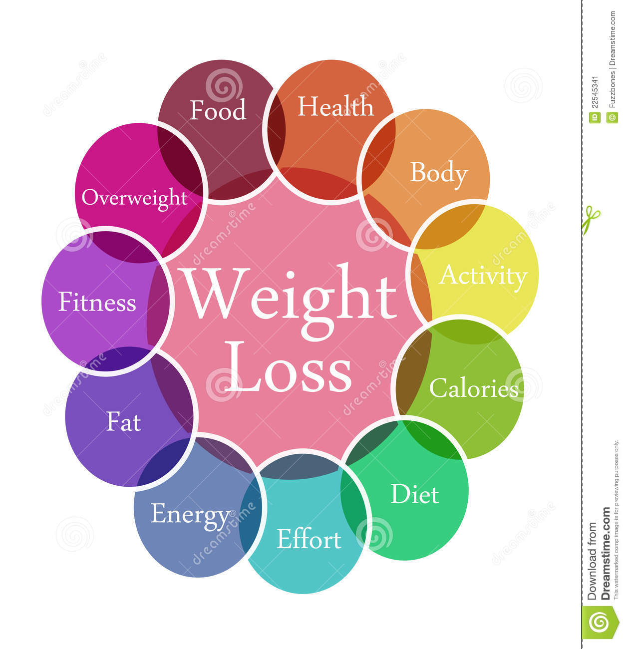 Weight Loss Illustration Stock Image - Image: 22545341