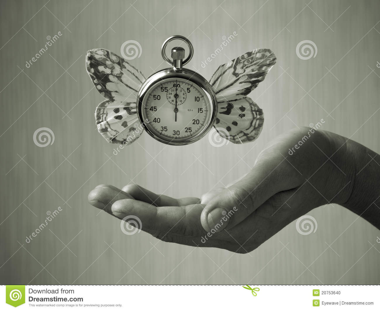 Weight Of Time >> The Weight Of Time Stock Photo Image Of Wings Floating 20753640
