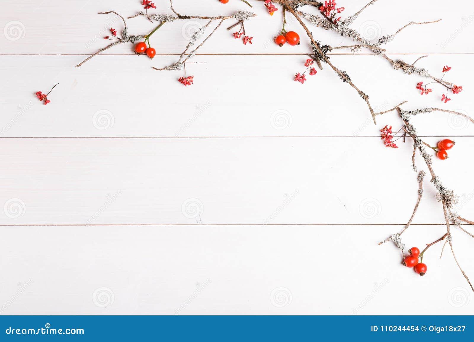 Weihnachts-, des neuen Jahres oder des Herbsteshintergrund, flache Lagezusammensetzung von Weihnachtsnatürlichen Verzierungen und