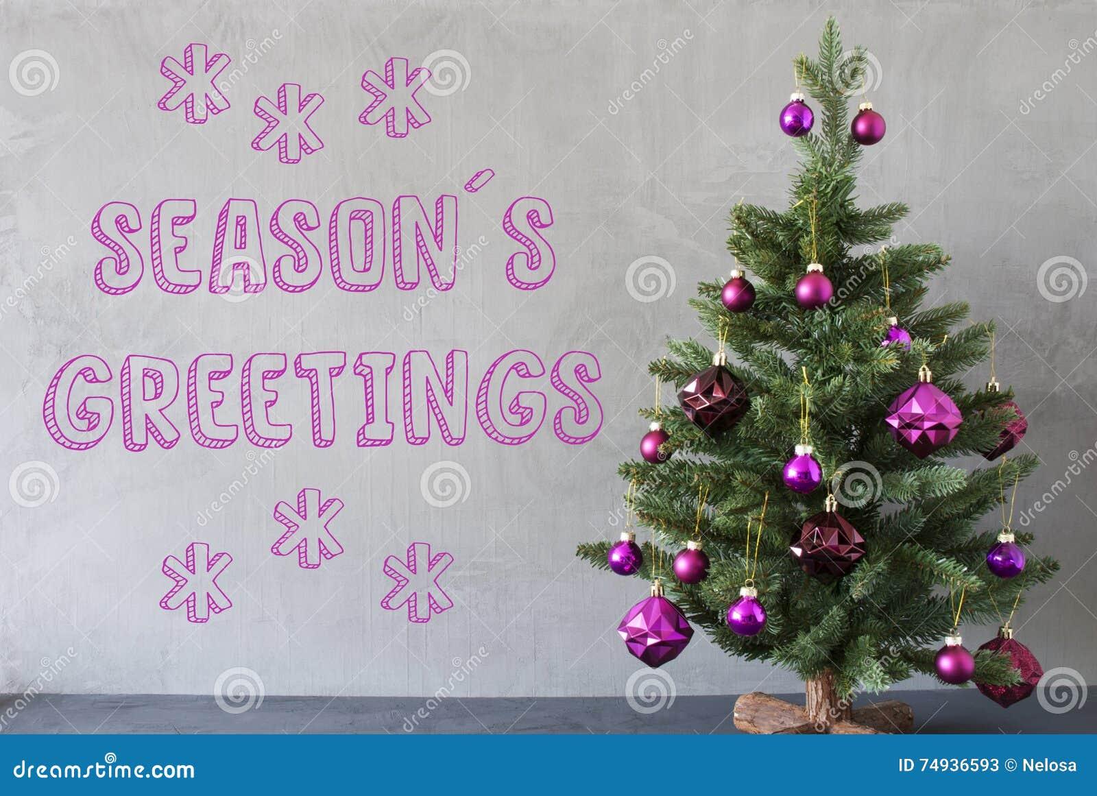 Weihnachtsbaum, Zement-Wand, Text Würzt Grüße Stockbild - Bild von ...