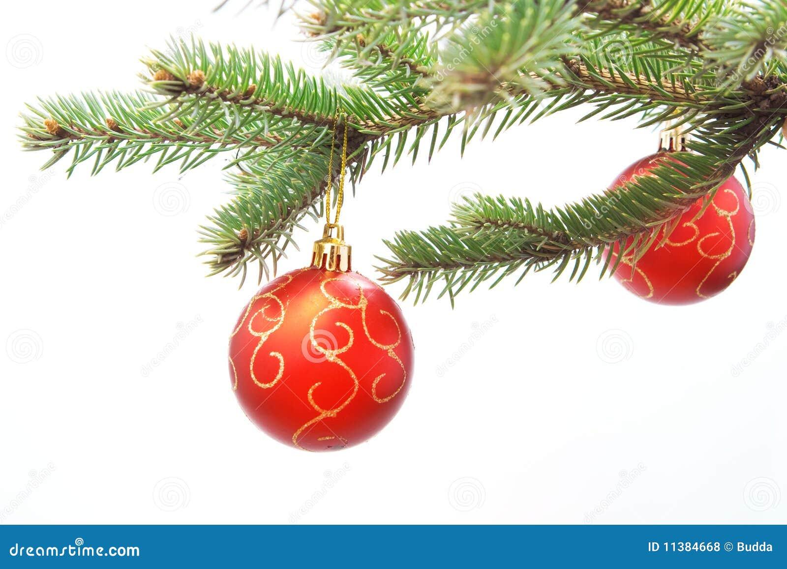 Weihnachtskugeln auf tannenzweig lizenzfreie stockfotos for Weihnachtskugeln bilder