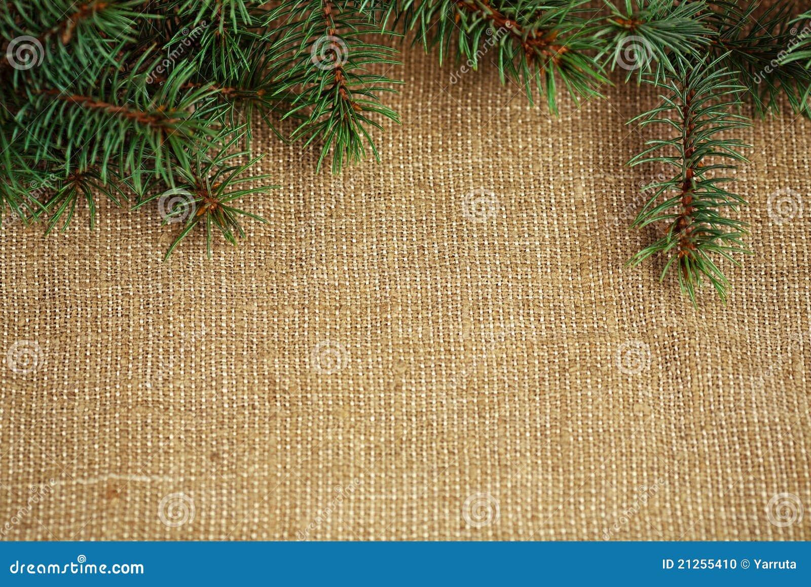 Weihnachtsrand vom Zweig