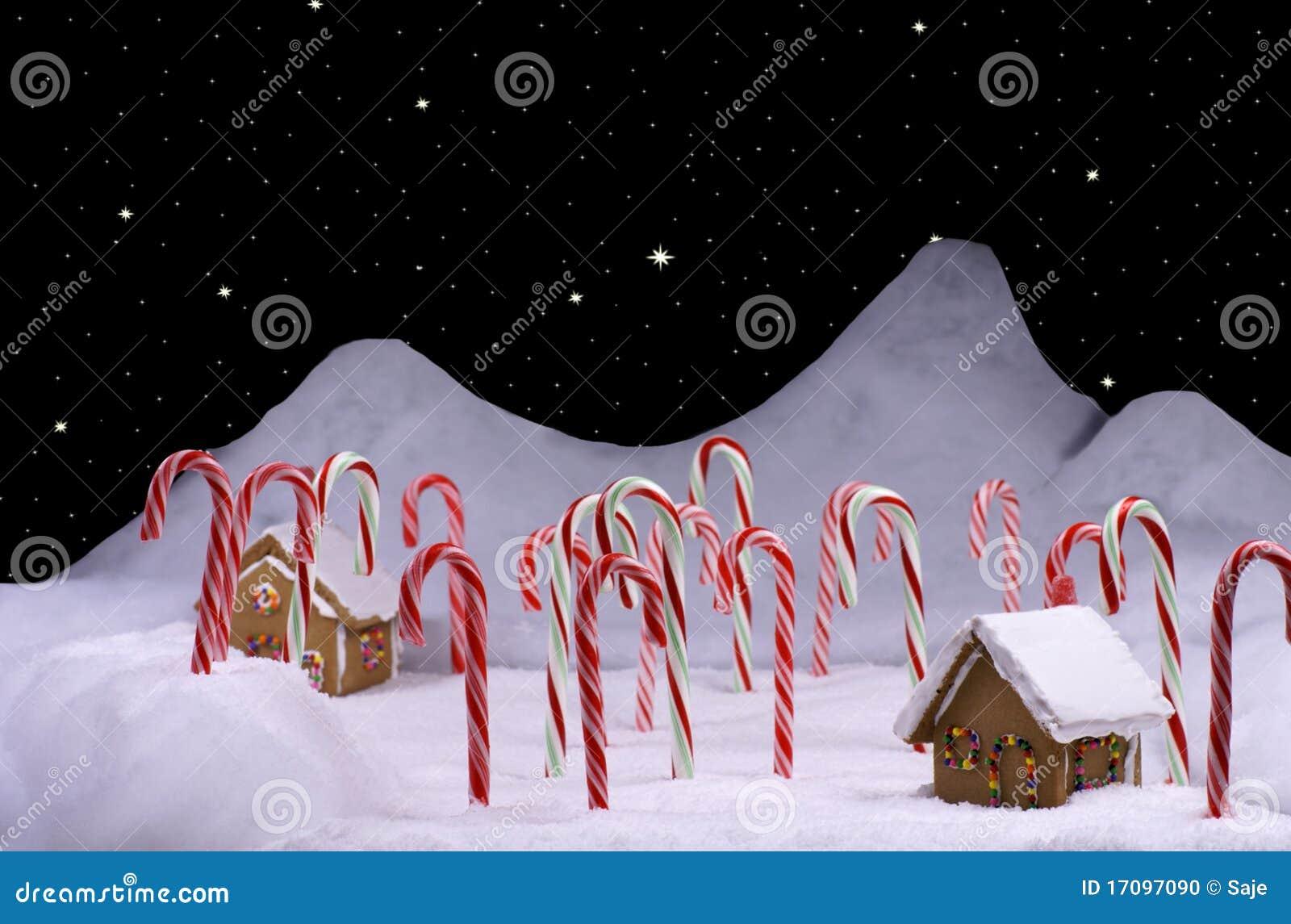 Weihnachtszuckerstange-Wald mit sternenklarem Himmel