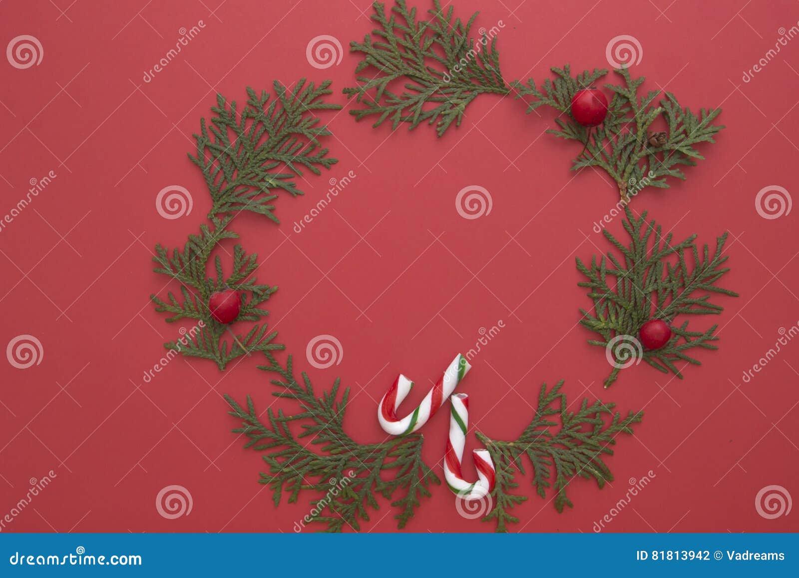 Weihnachtszusammensetzung gemacht von den grünen Thujazweigen und von den Zuckerstangen auf rotem Hintergrund Draufsicht, flache