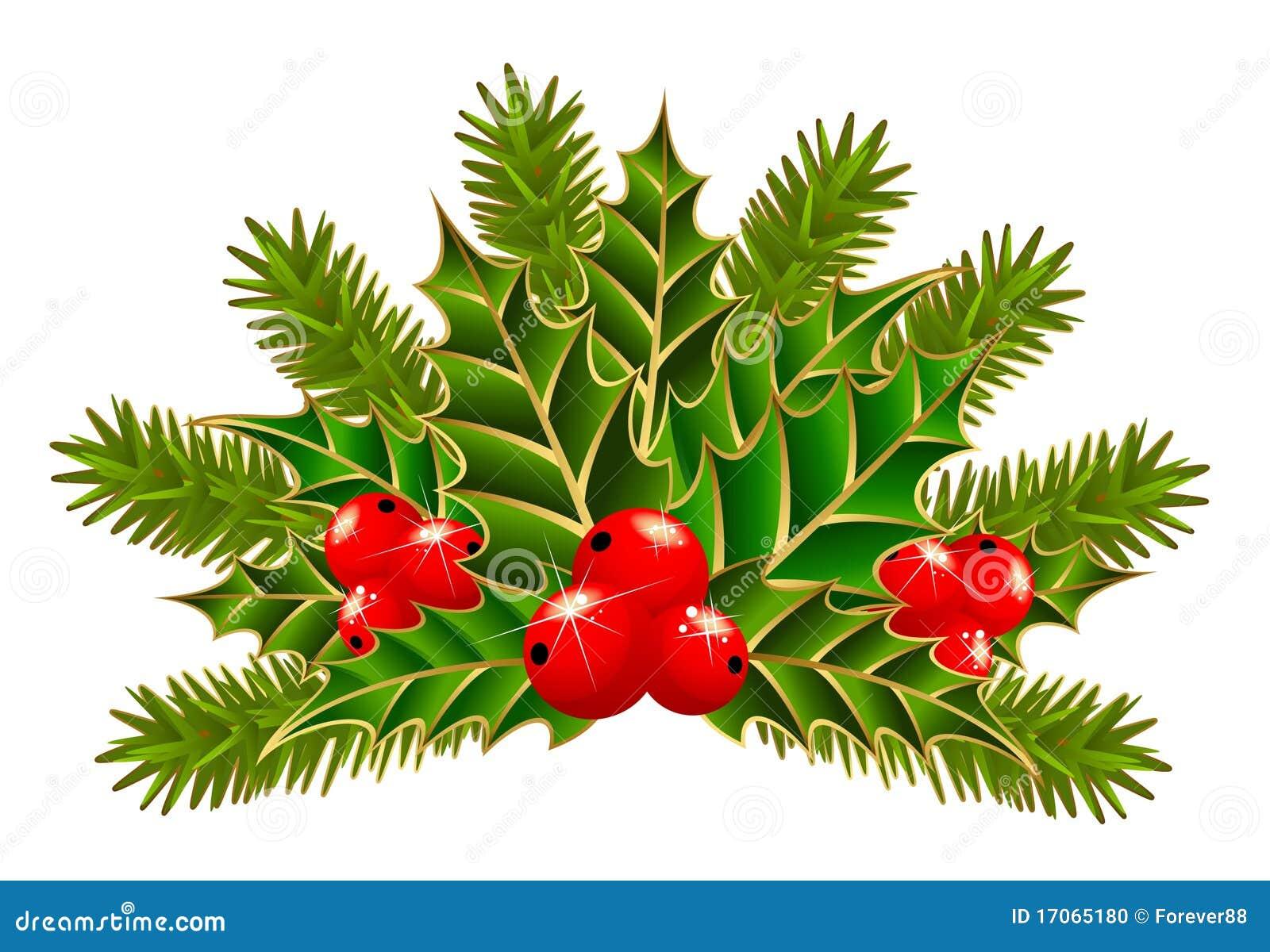 weihnachtszweig mit beeren vektor abbildung bild von stechpalme 17065180. Black Bedroom Furniture Sets. Home Design Ideas