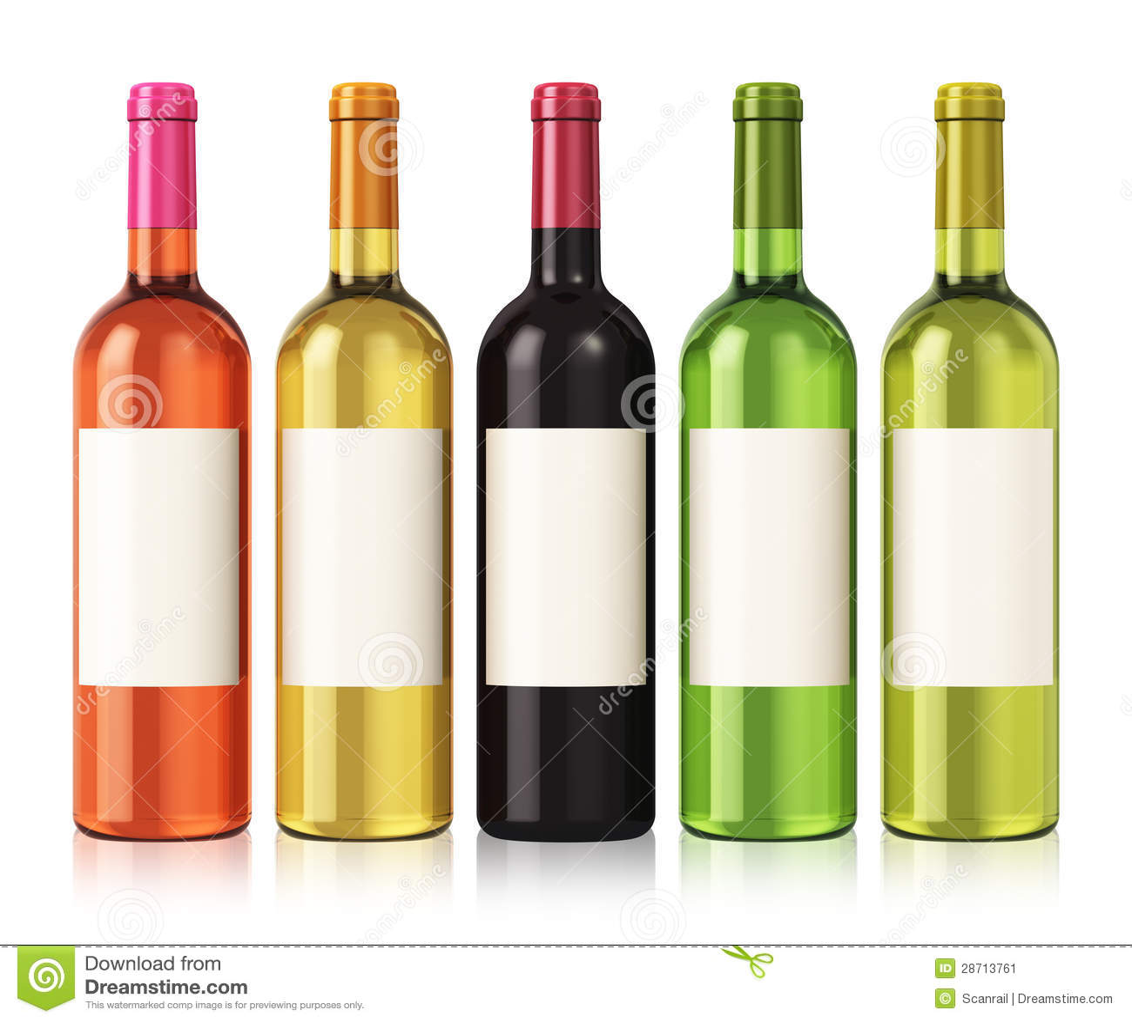 Hand Gezeichnete Weinflasche U. -gläser Vektor Abbildung ...