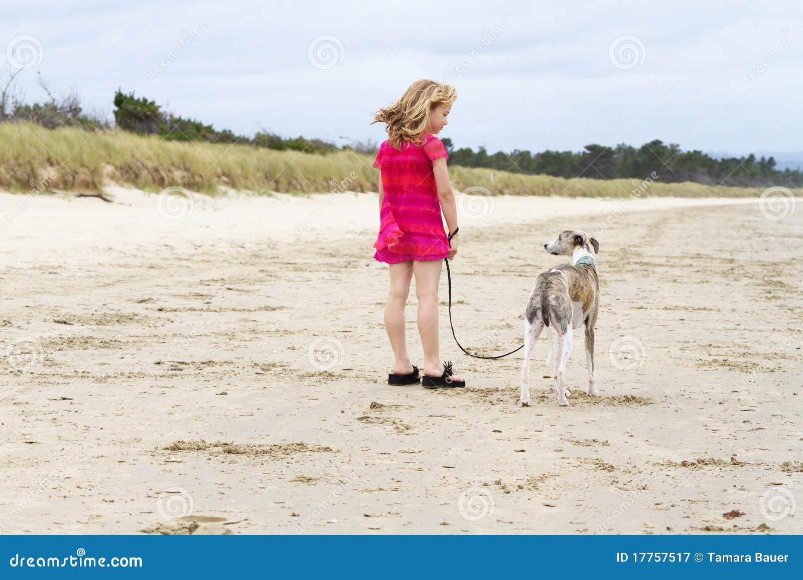 Weinig blond meisje met whippet op strand