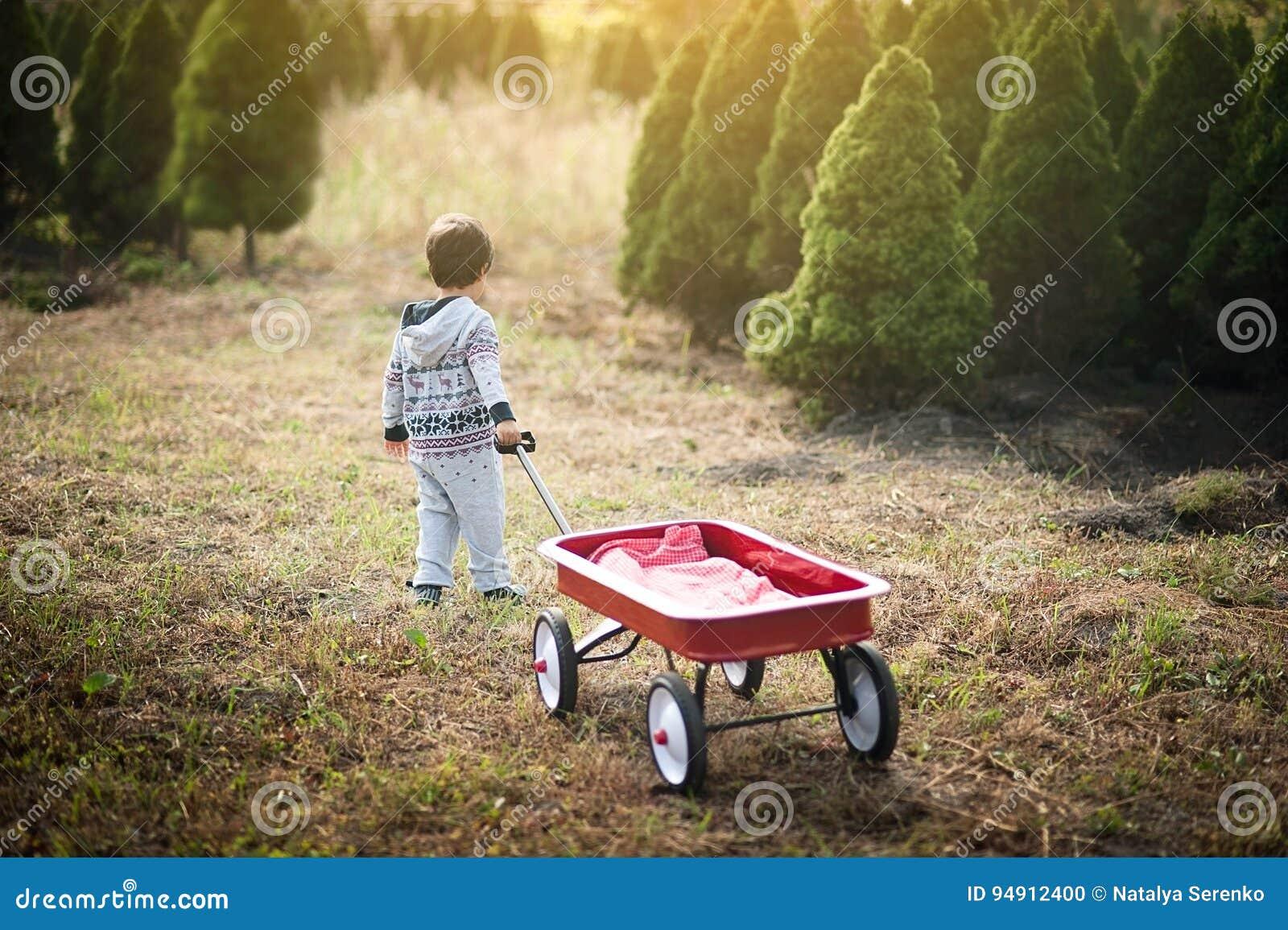Weinig jongen met rode wagen