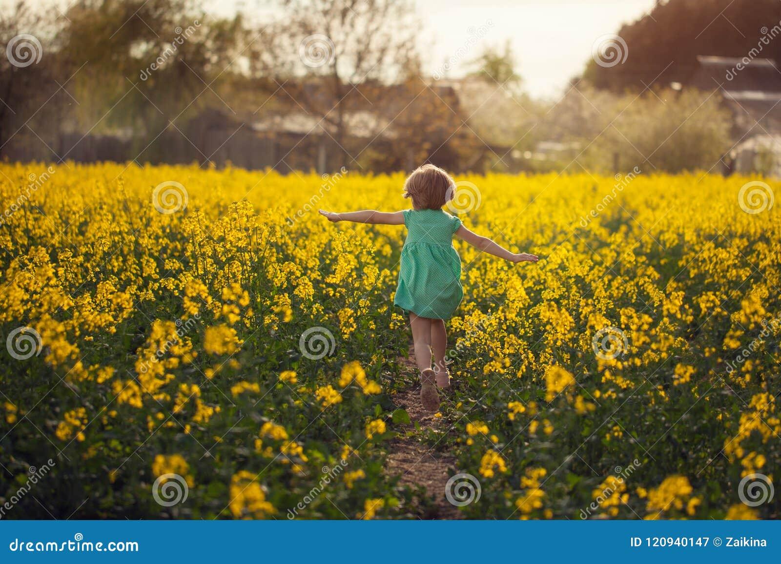 Weinig kind die op geel gebied in zonnige de zomerdag lopen Achter mening