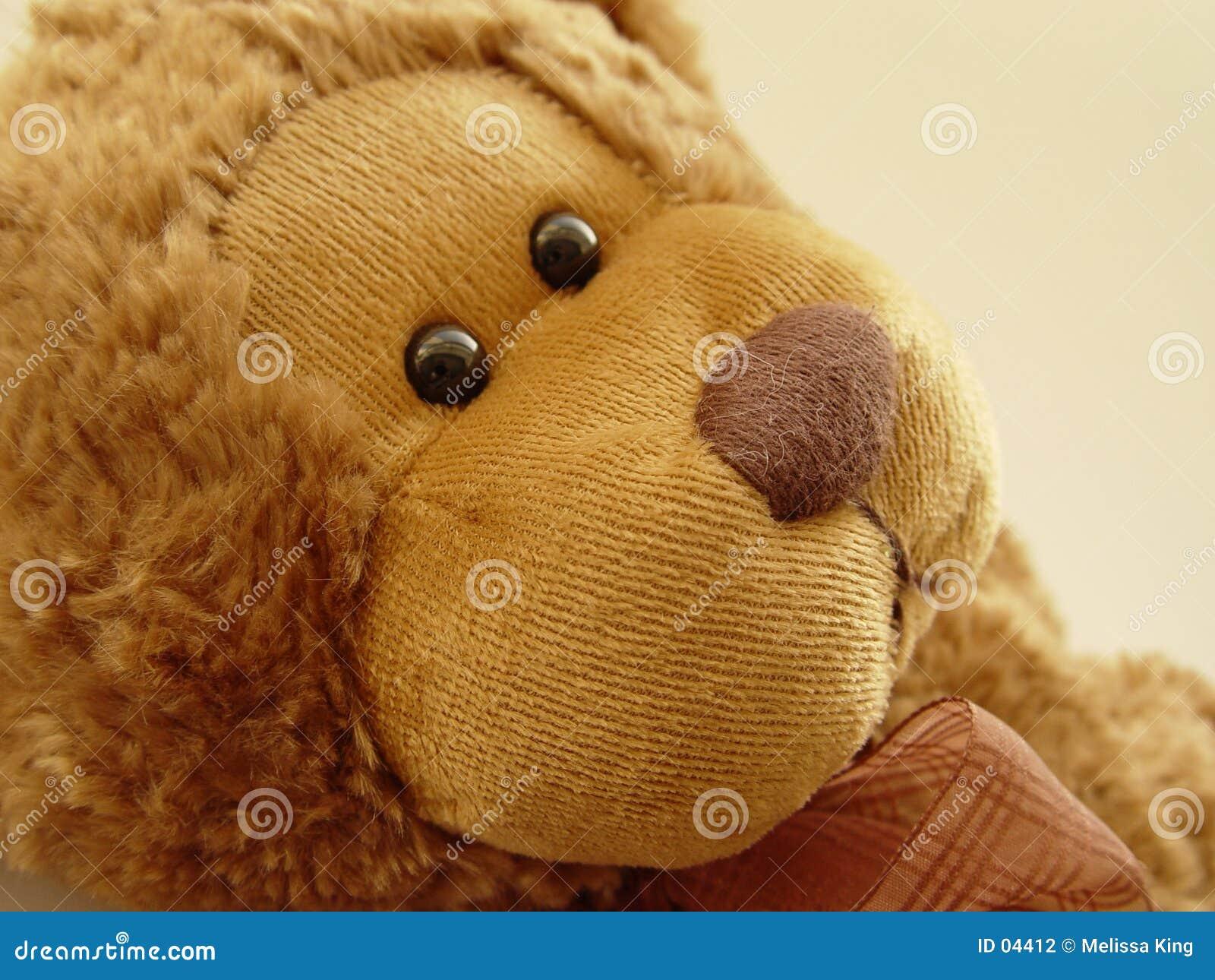 Weinig Teddybeer