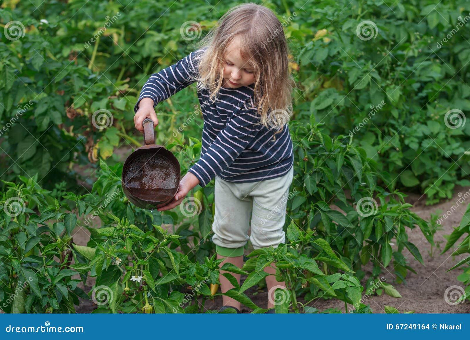 Weinig tuinmanmeisje bij de zomer het water geven groenten werkt