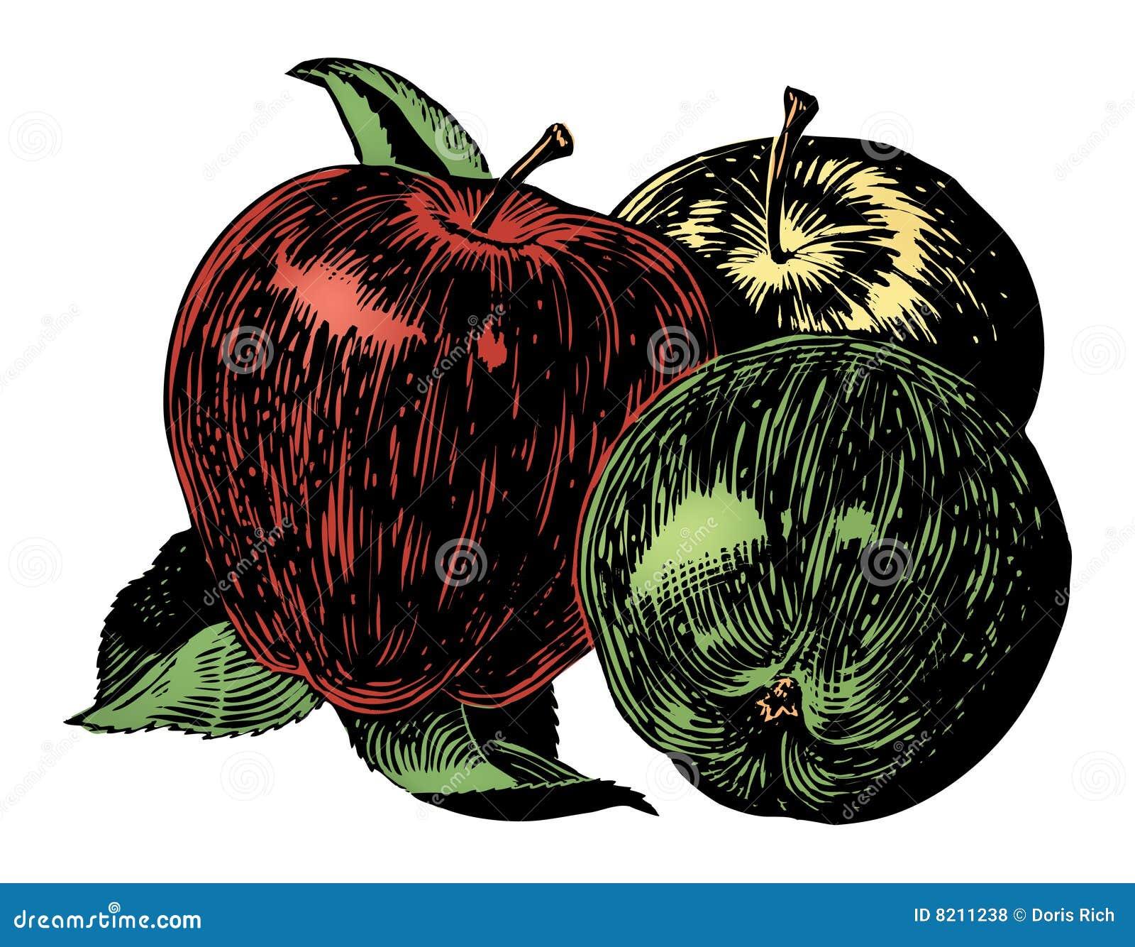 Weinlesefünfziger jahre Äpfel