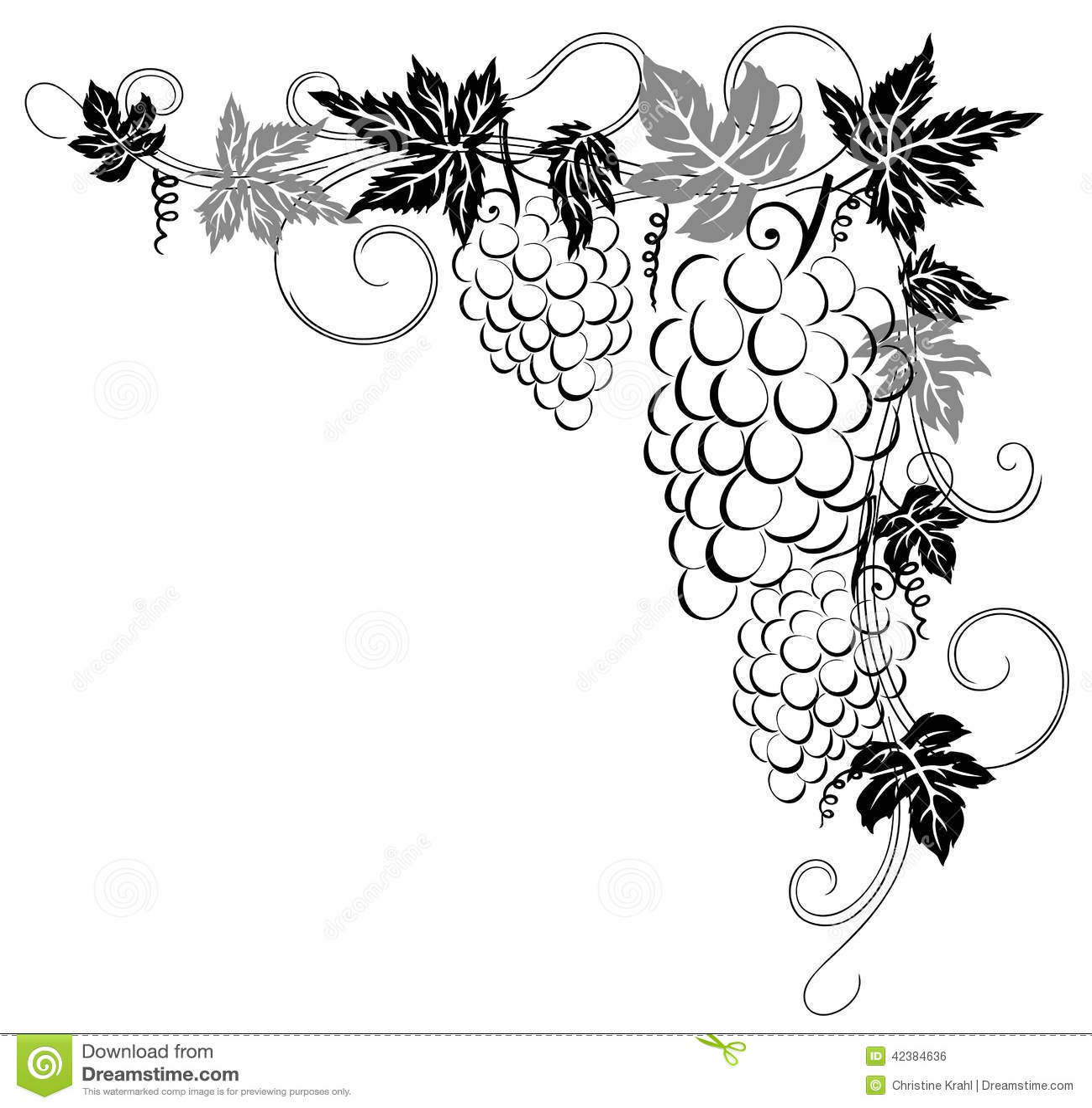 weinreben vektor abbildung bild 42384636 vine vector png vine vector images