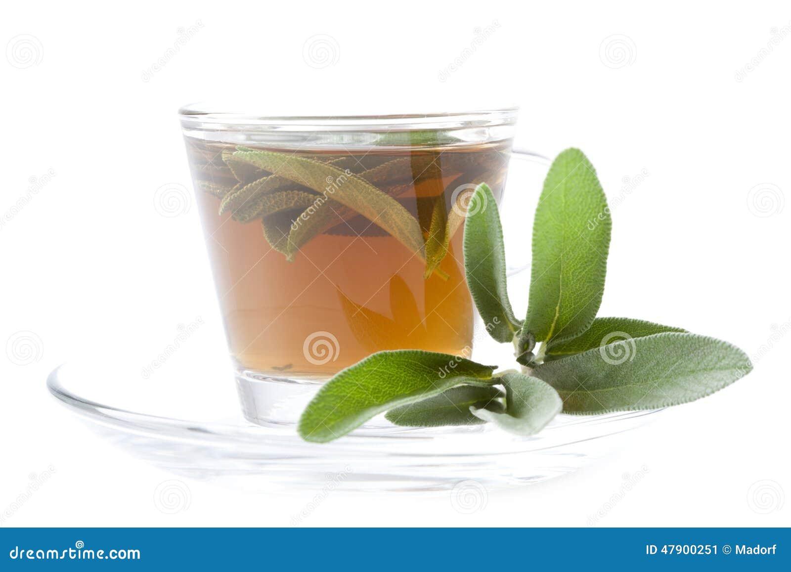 Weiser Tee Auf Weißem Hintergrund, Stockbild - Bild von bestandteil ...