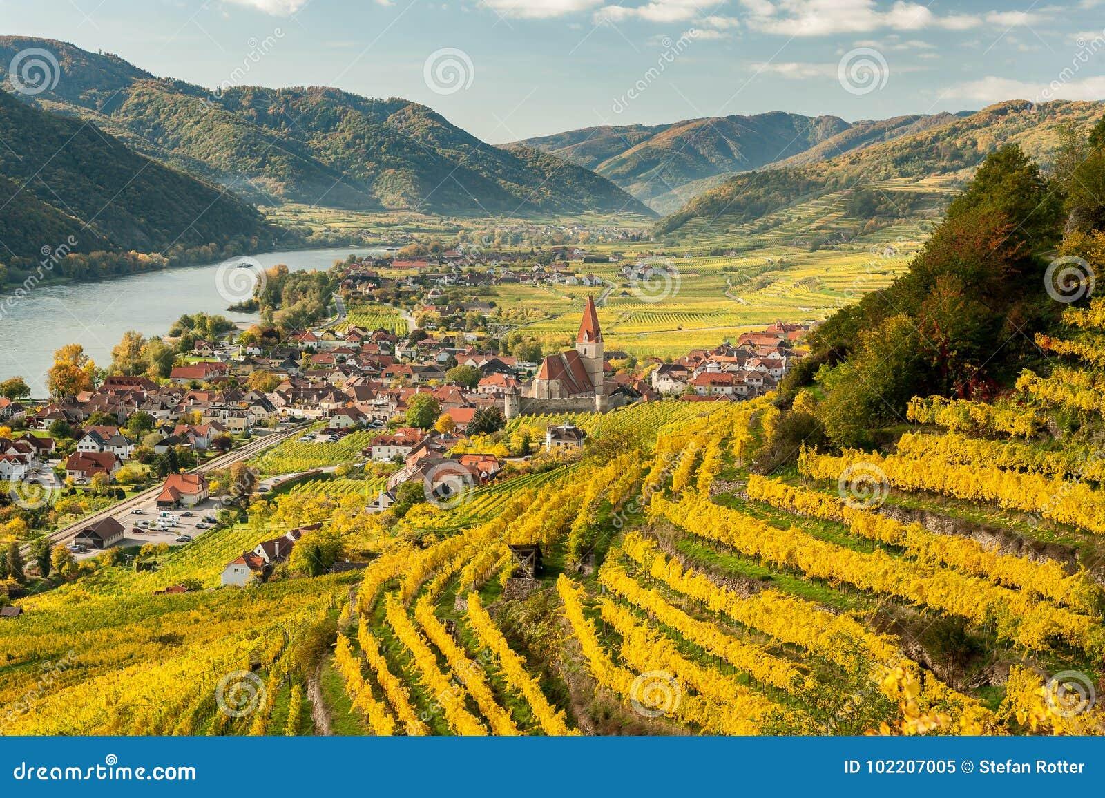 Weissenkirchen Wachau Austria en otoño coloreó las hojas y viney