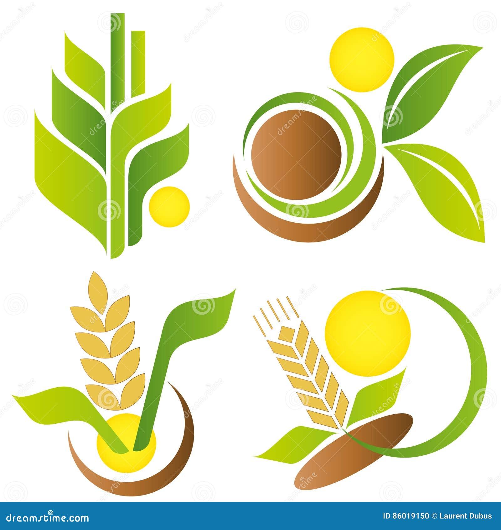 Weizen und Mais Elemente für Auslegung