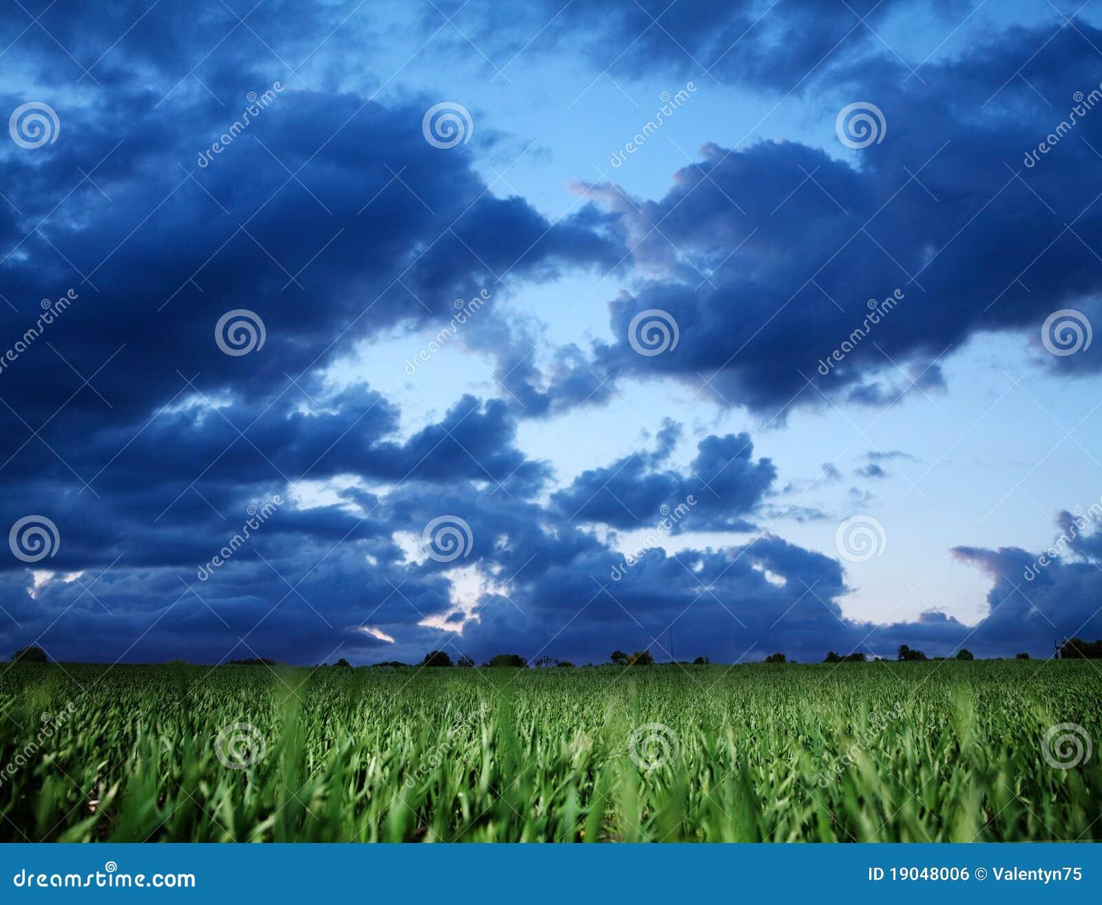 Weizenfeld und stürmischer Himmel der Dunkelheit bly.