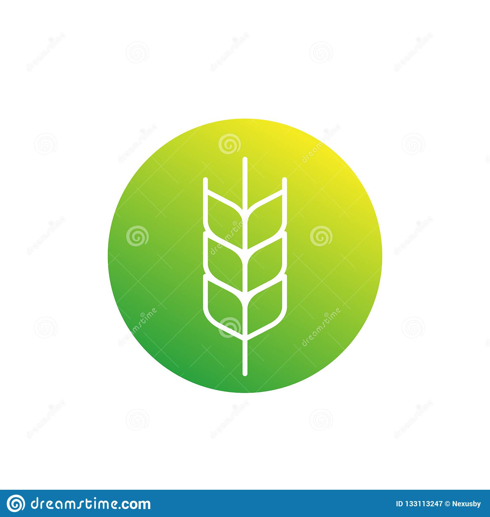 Weizenikone, linear
