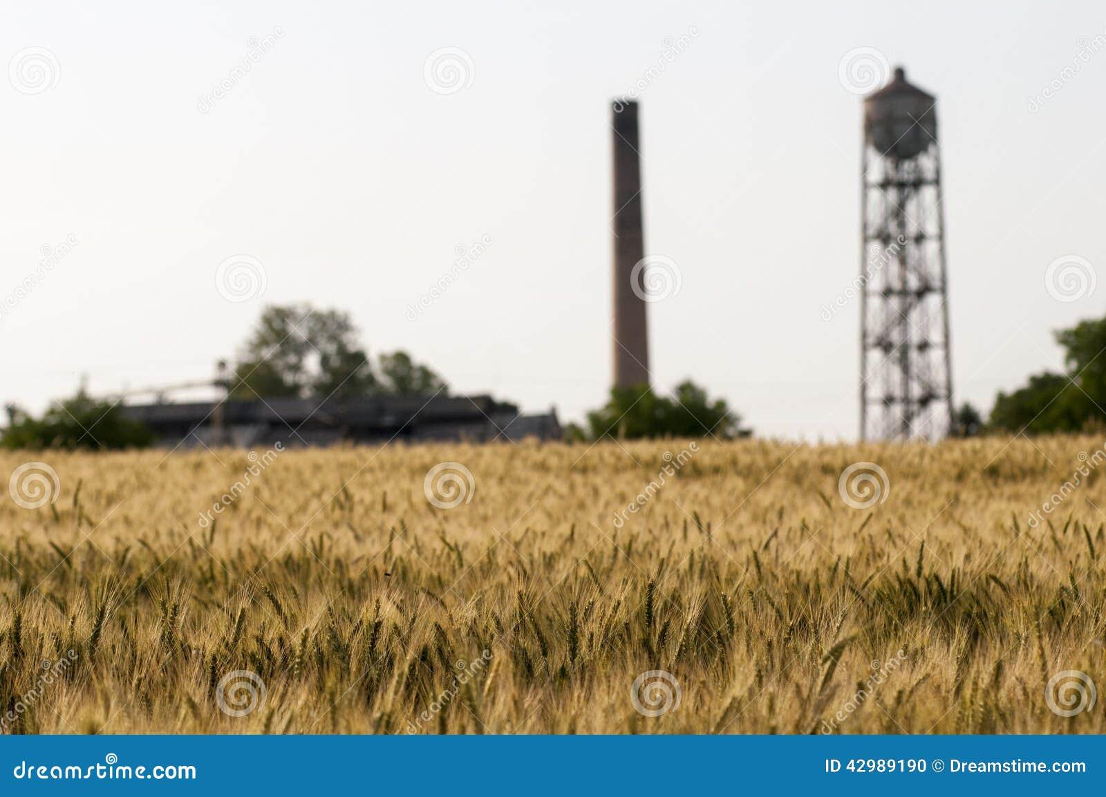 Weizenland