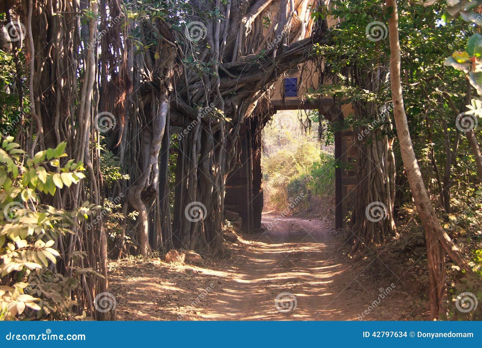Wejściowa brama Ranthambore park narodowy, India