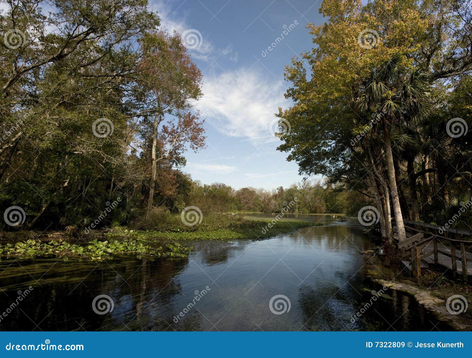 Wekiva Springs in Florida