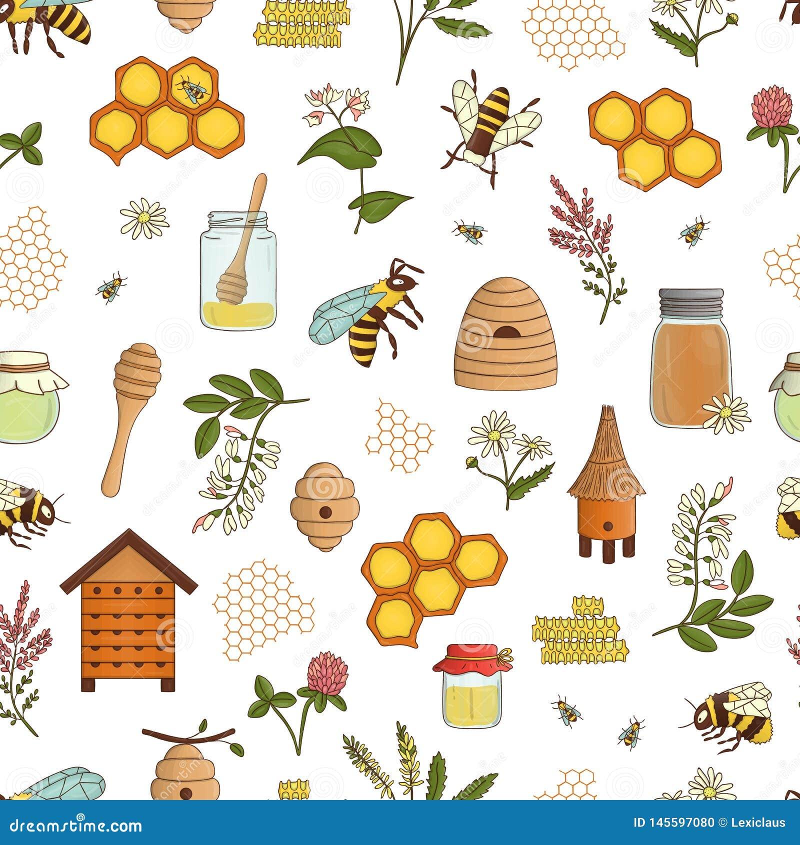 Wektor barwił bezszwowego wzór miód, pszczoła, bumblebee