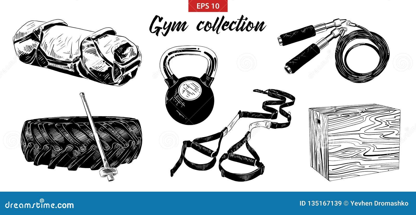 Wektor grawerował stylowe ilustracje dla plakatów, logo, emblemata i odznaki, Ręka rysujący nakreślenie set gym i sprawności fizy