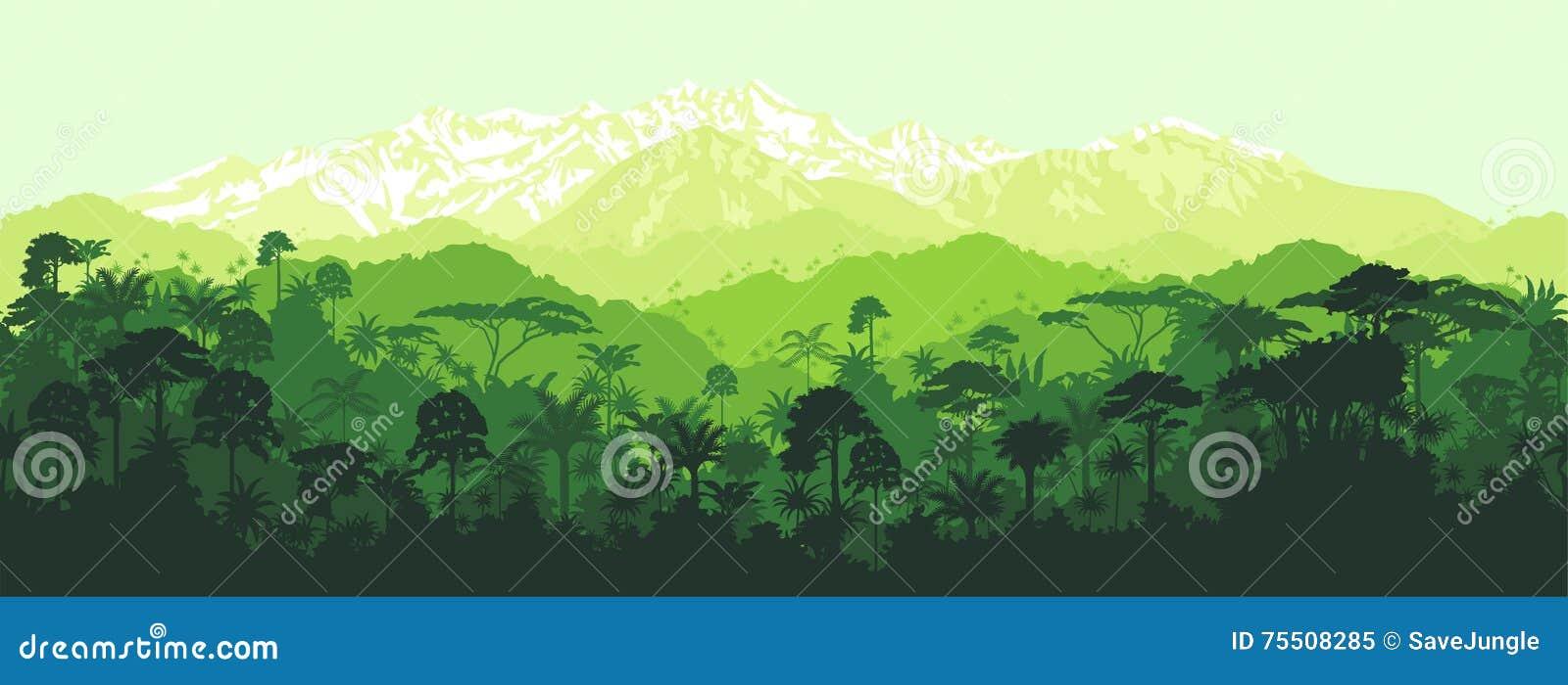 Wektorowa horyzontalna bezszwowa tropikalna dżungla z góry tłem
