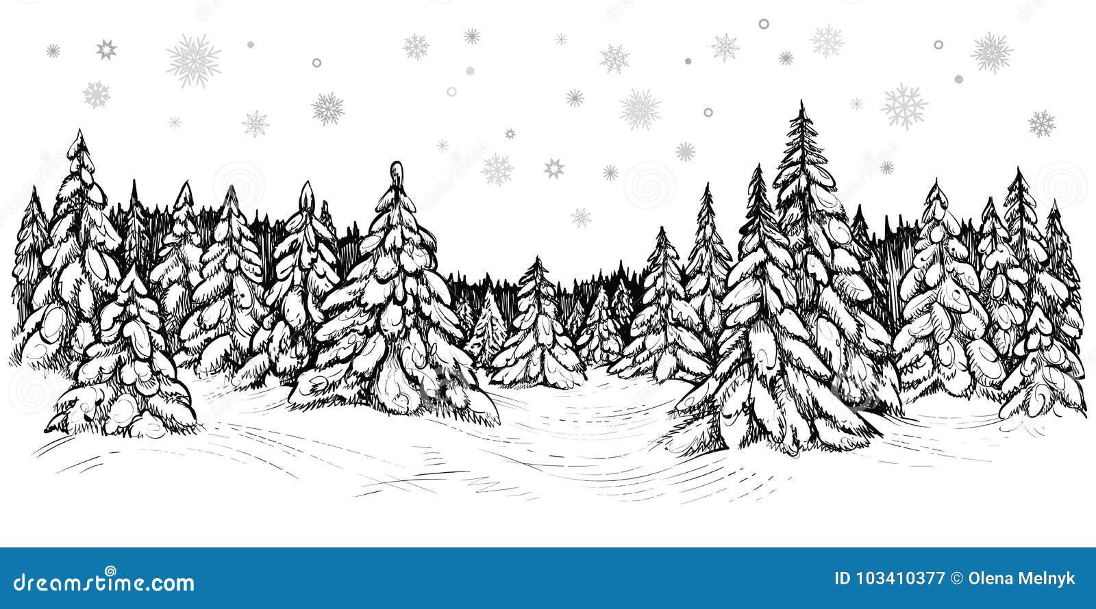 Wektorowa ilustracja śnieżne jodły Zima las zakrywający z śniegiem, ręka rysujący nakreślenie