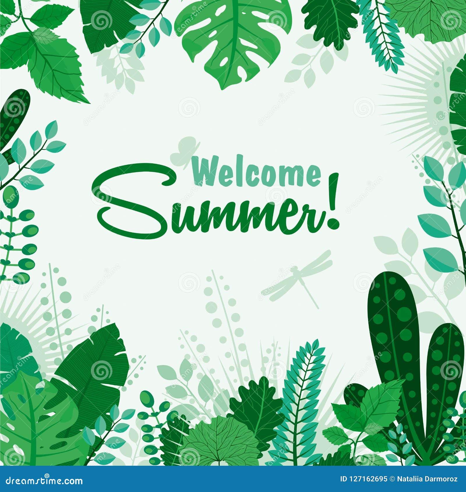 Wektorowa ilustracja lato plakata lub kartka z pozdrowieniami lata liścia Mile widziany sztandar Literowania lata sezon dla powit