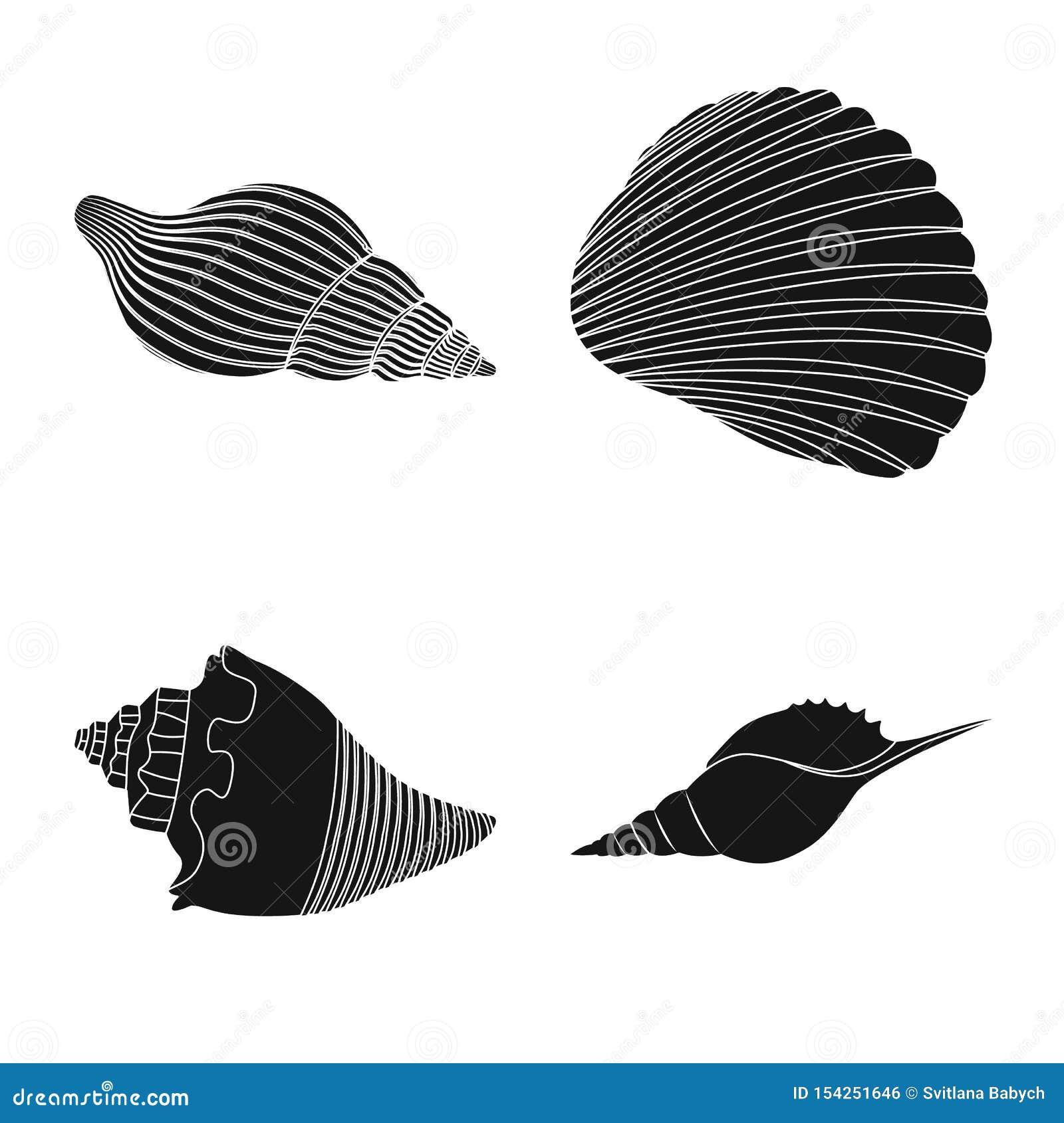 Wektorowa ilustracja natury i oceanu symbol Set natury i mollusk akcyjna wektorowa ilustracja