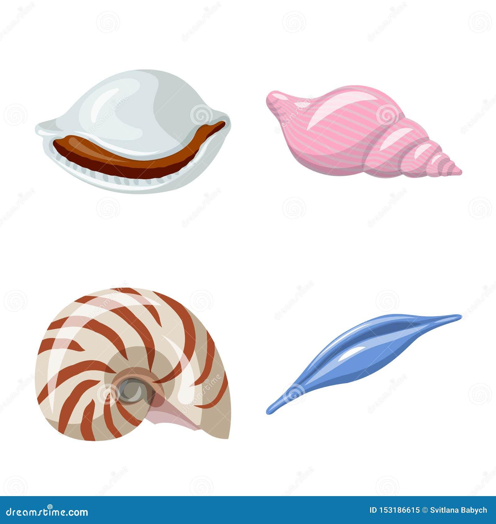 Wektorowa ilustracja seashell i mollusk symbol Kolekcja seashell i owoce morza wektorowa ikona dla zapasu