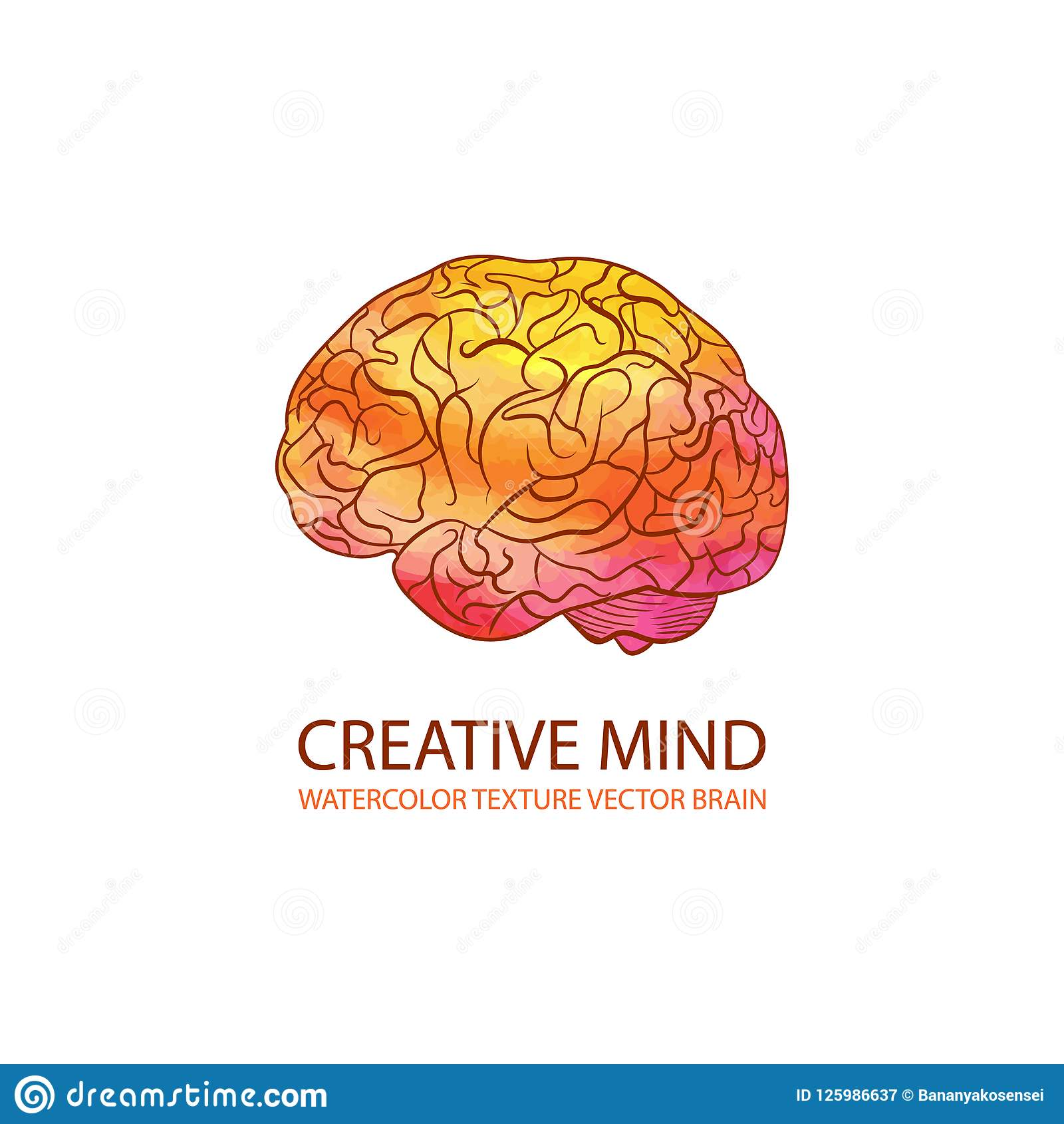 Wektorowa Kreatywnie umysł ilustracja, akwarela Gradientowy Kolorowy mózg, loga szablon