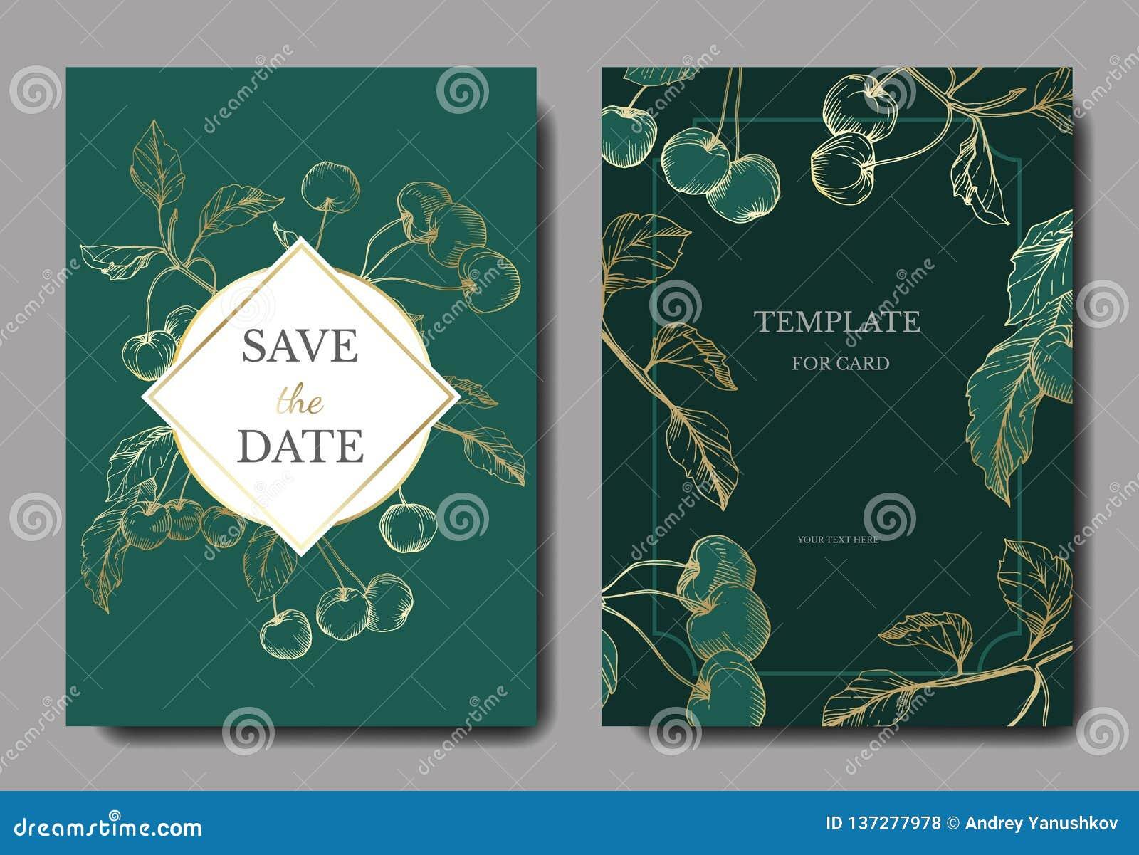Wektorowe Czereśniowe owoc Złota i zielona grawerująca atrament sztuka Ślubnej tło karty kwiecista dekoracyjna granica