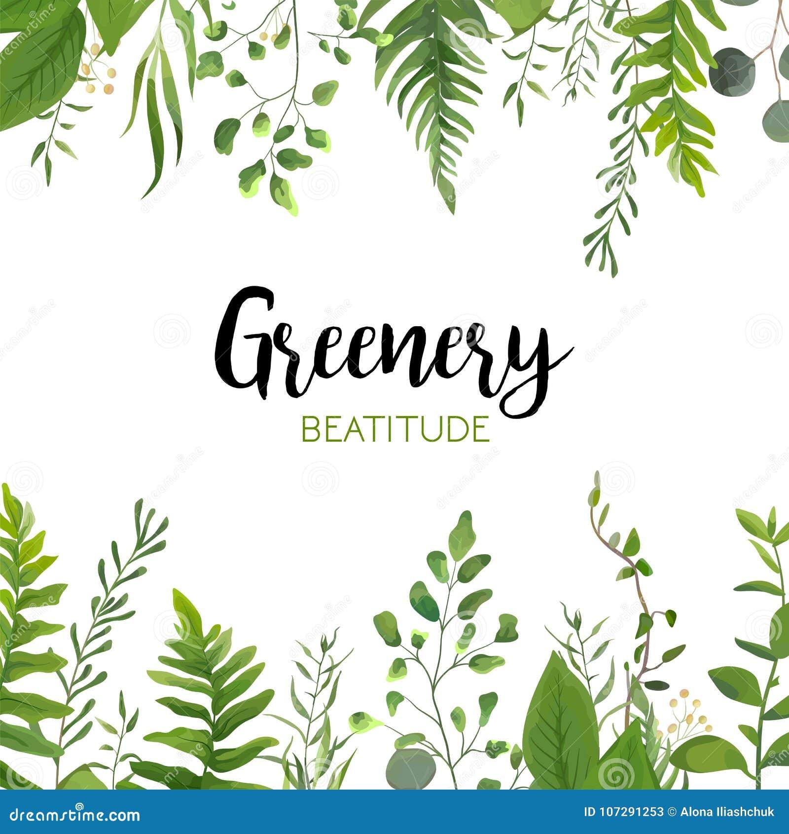 Wektorowego kwiecistego greenery karciany projekt: Lasowy paprociowy frond, Eucalyptu