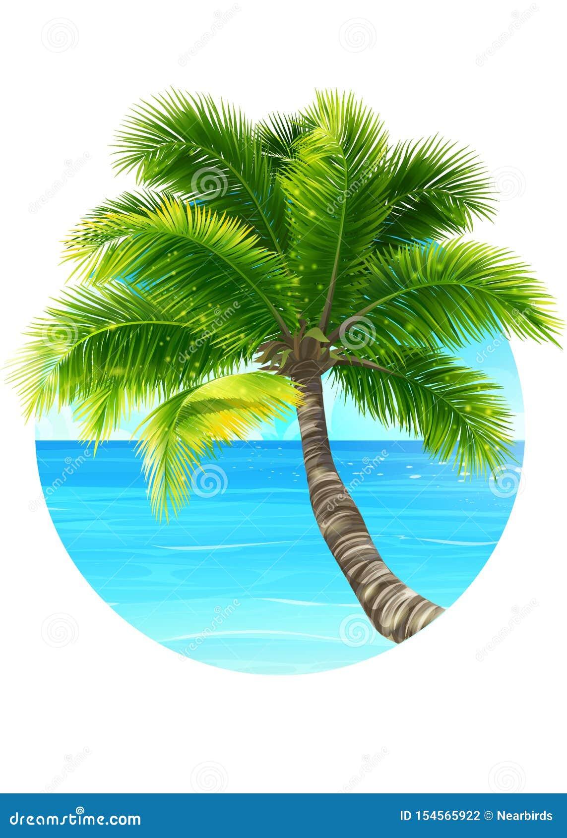 Wektorowego tła ilustracyjny drzewko palmowe i ocean