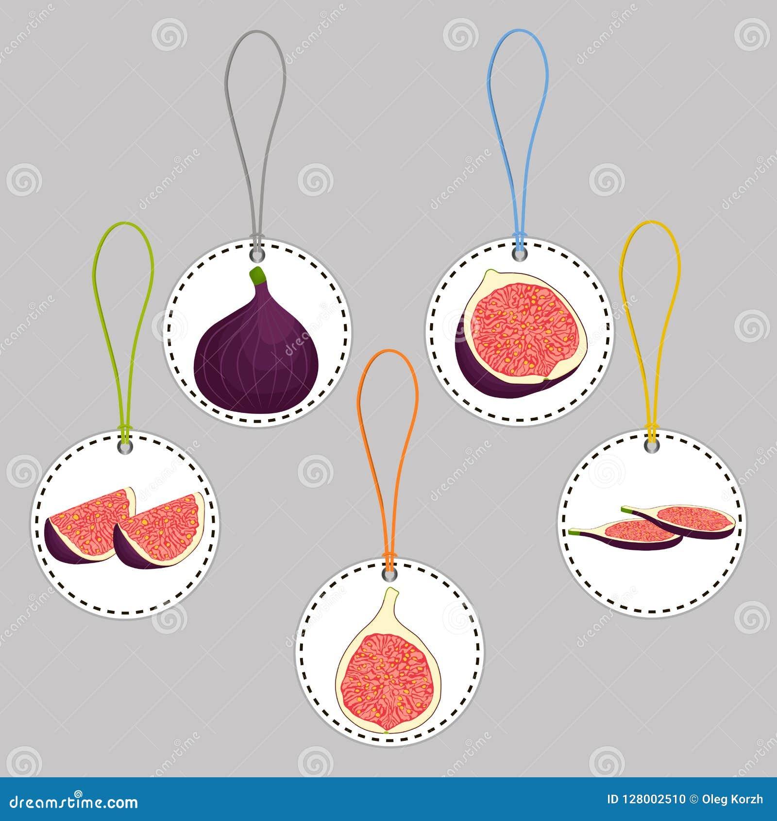 Wektorowej ikony ilustracyjny logo dla całych dojrzałych owocowych purpur czupirzy