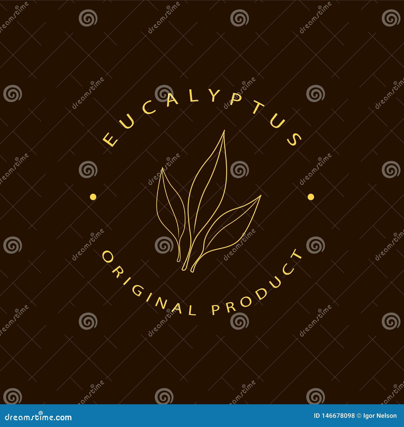 Wektorowi eukaliptusowi logo projekta szablony i emblemat Pi?kno i kosmetyk?w oleje - eukaliptus Naturalny eukaliptus Logo w lini
