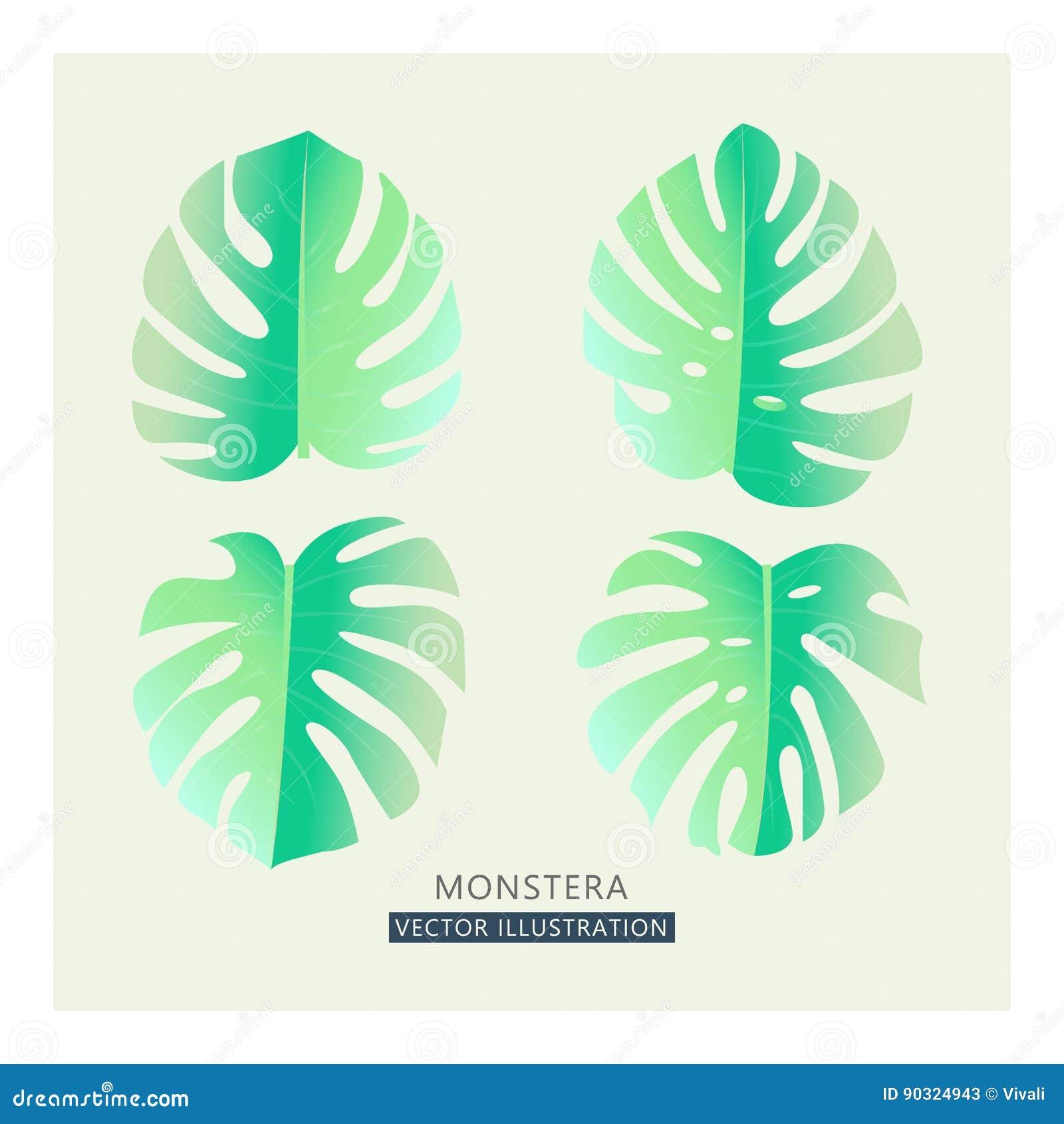 Wektorowi tropikalni palma liście Rozszczepiony liścia rysunek w czułych pastelowych kolorach, rocznika styl